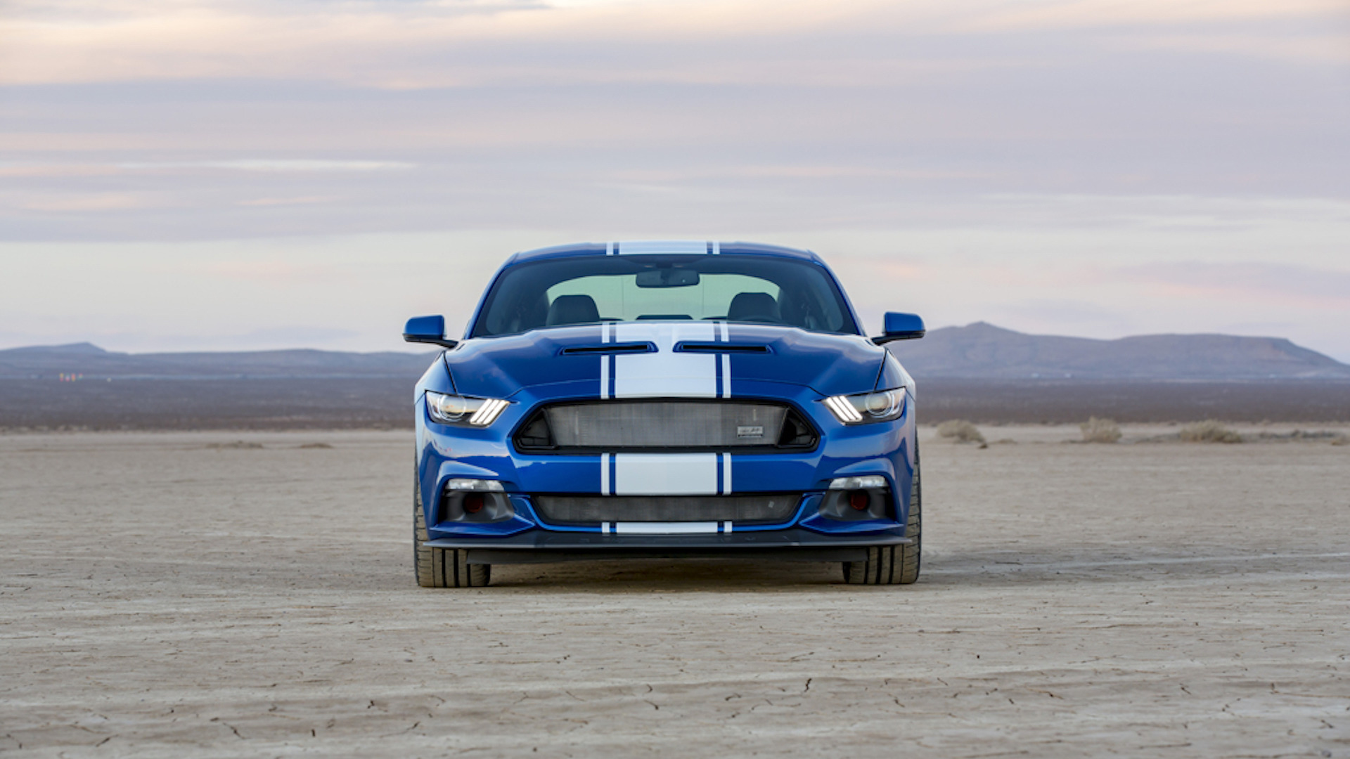 2017_Shelby_Super_Snake_50th_Anniversary_02