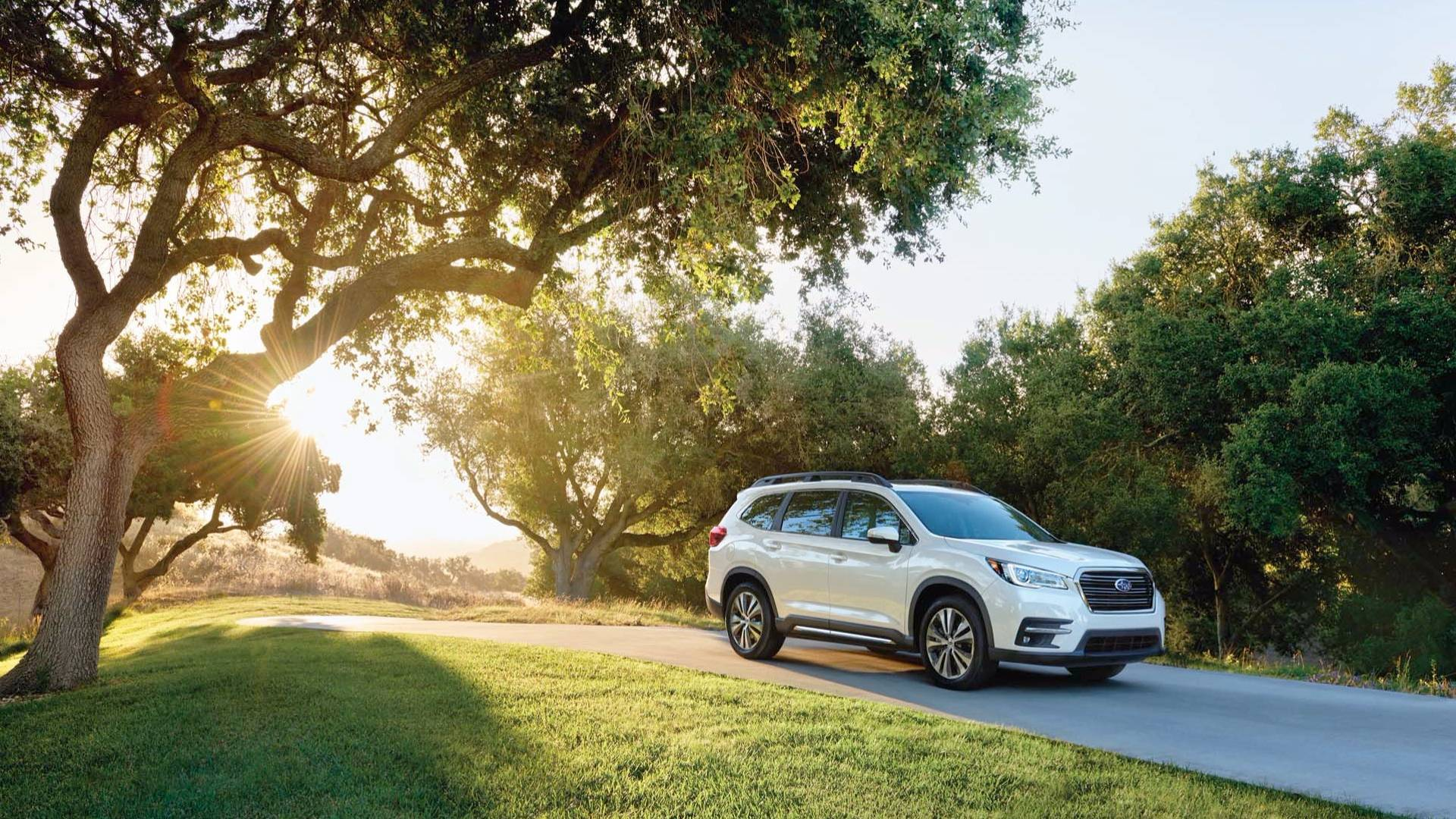 2019_Subaru_Ascent_16
