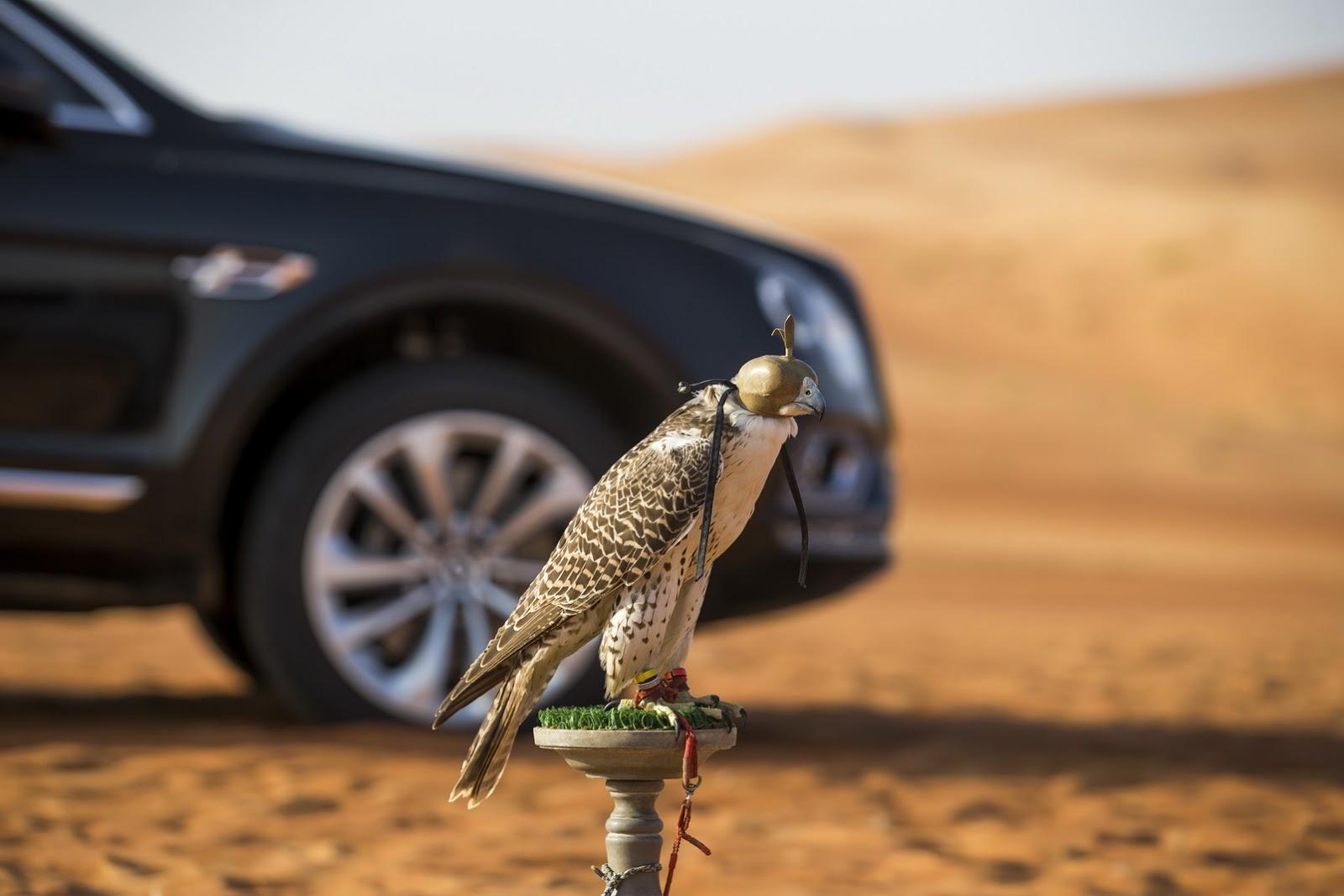 Bentley Bentayga Falconry by Mulliner (19)