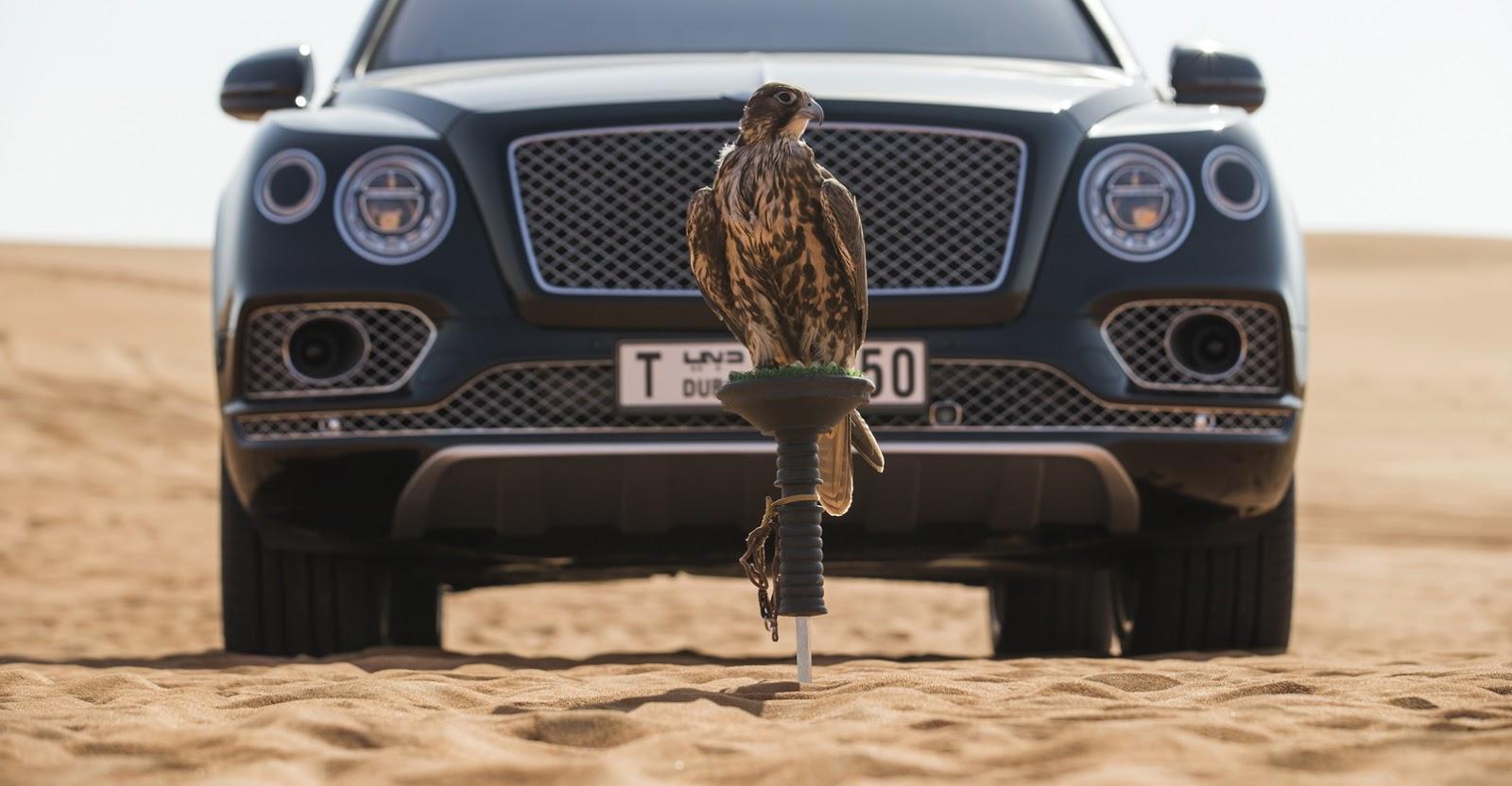 Bentley Bentayga Falconry by Mulliner (23)