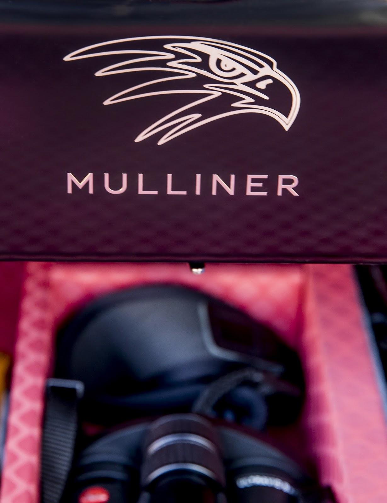 Bentley Bentayga Falconry by Mulliner (35)