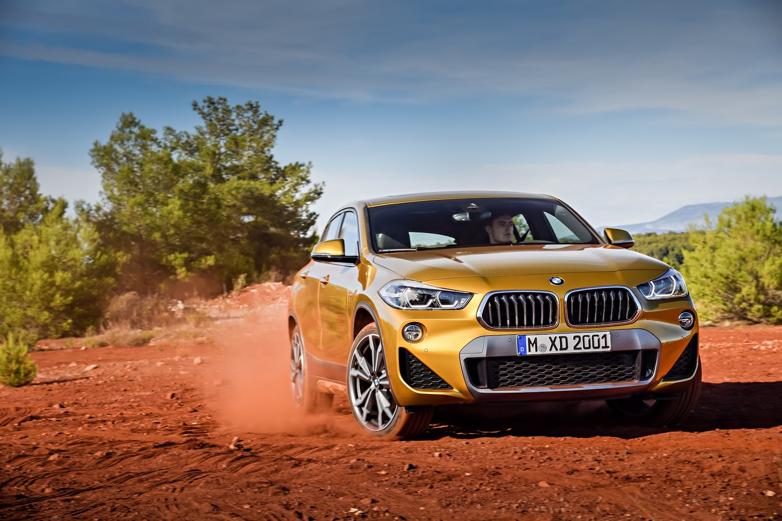 BMW-X2-48
