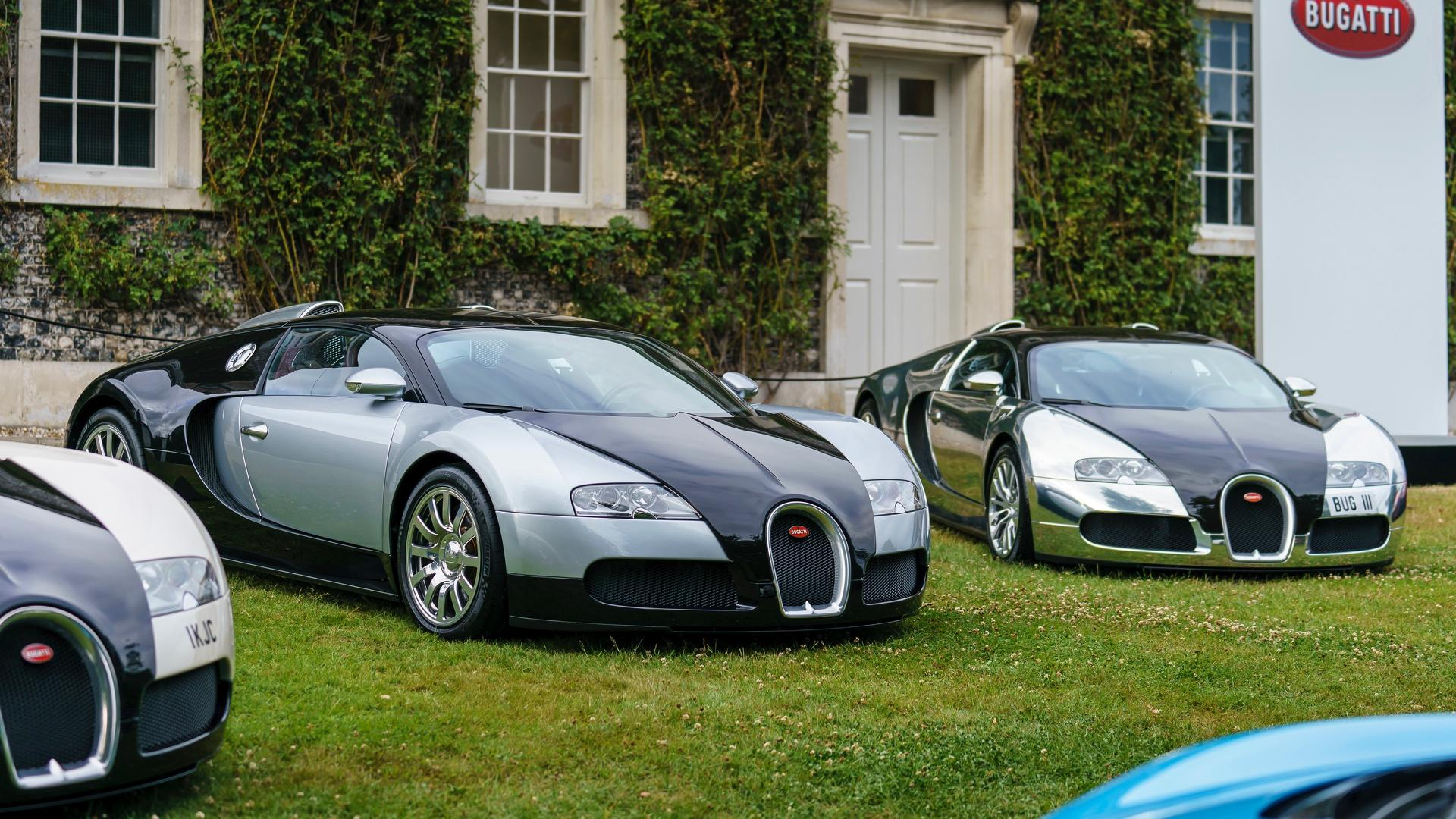bugatti-at-the-goodwood-festival-of-speed (1)