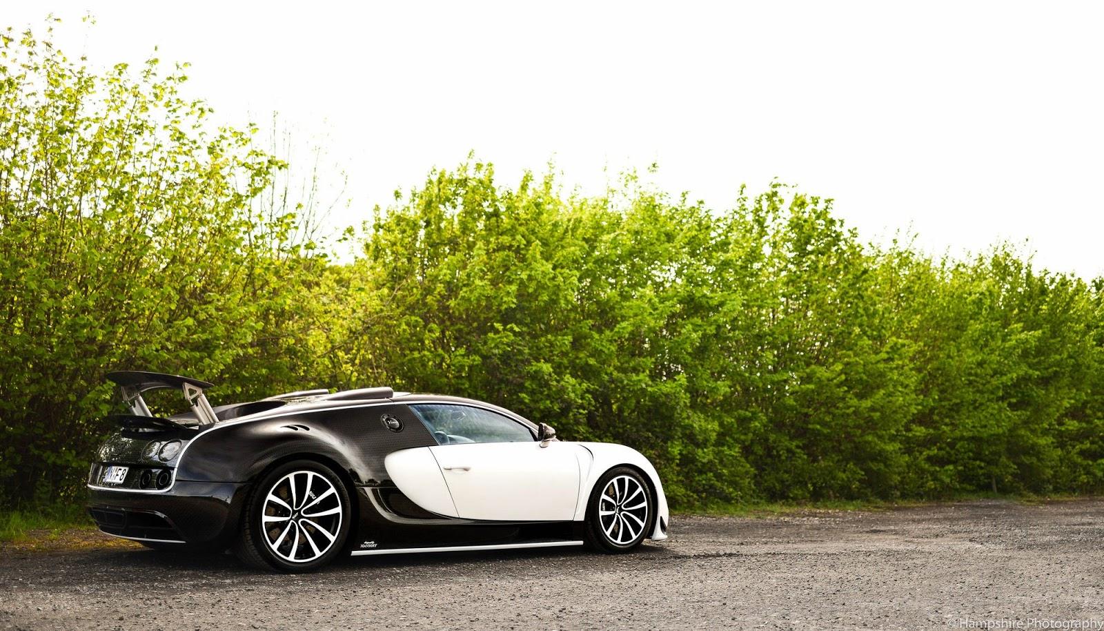 Bugatti_Veyron_Vivere_by_Mansory_04