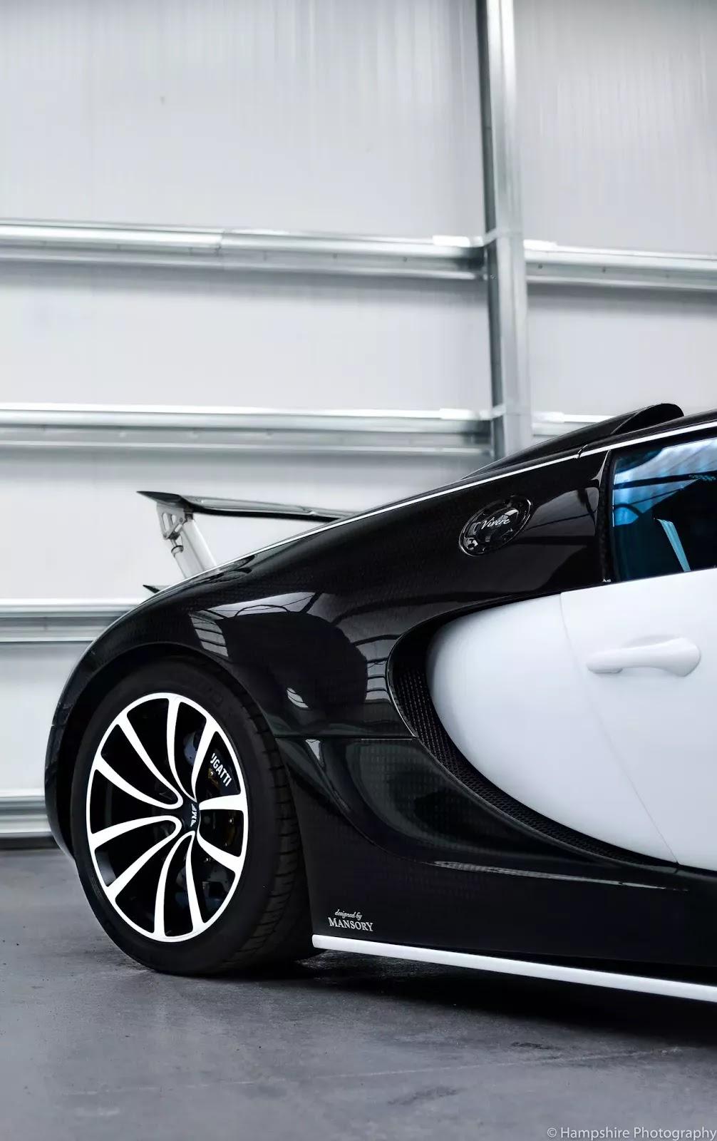 Bugatti_Veyron_Vivere_by_Mansory_12