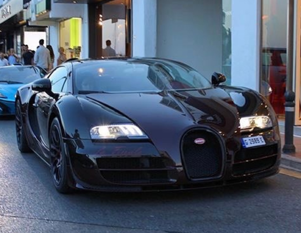 Buggati Collector (3)