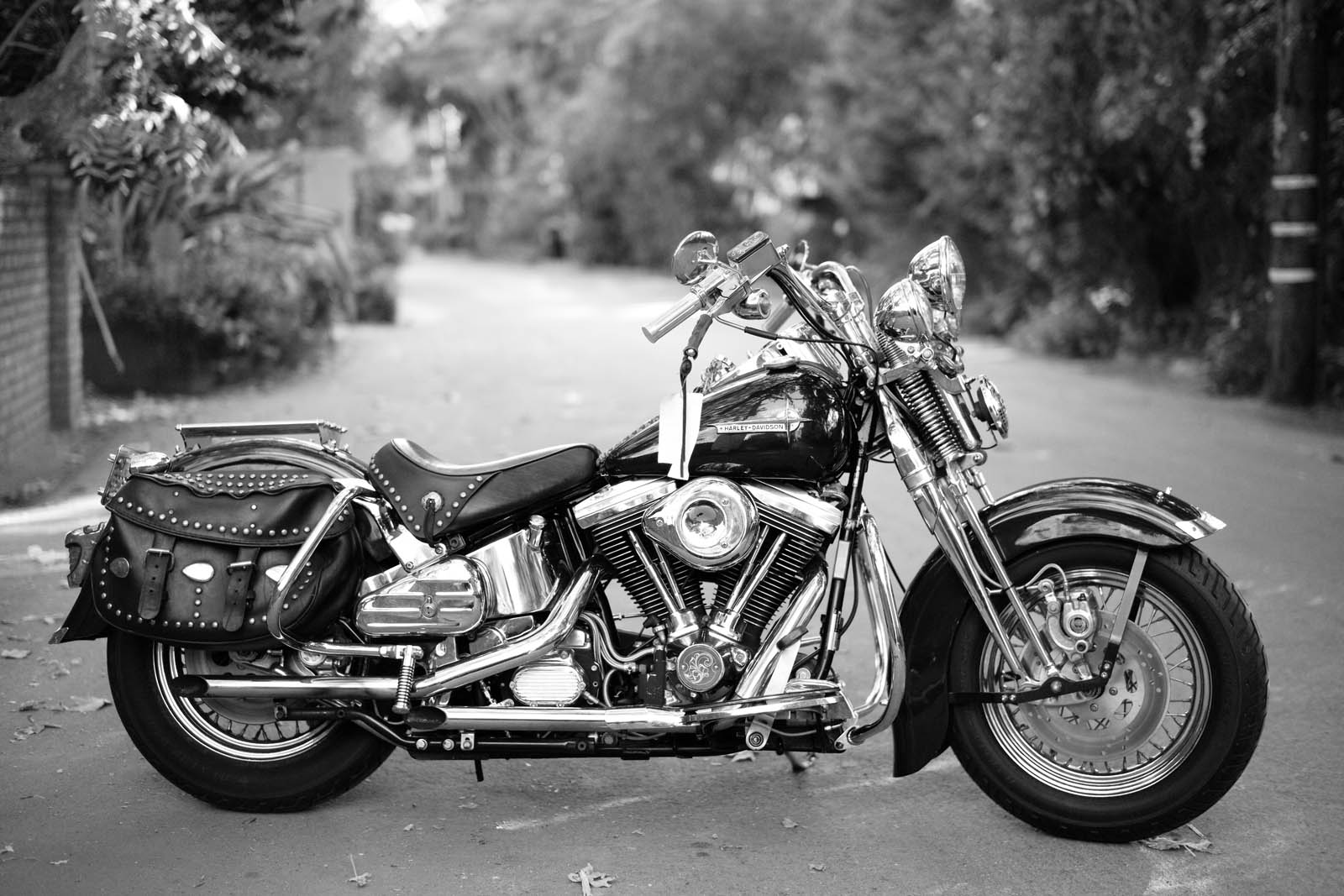 126+1989+Harley+Davidson+Softail+Springer+1340+cc+%C2%A9+Artcurial+Motorcars+%C2%A9Mathieu+Ce%CC%81sar+copy
