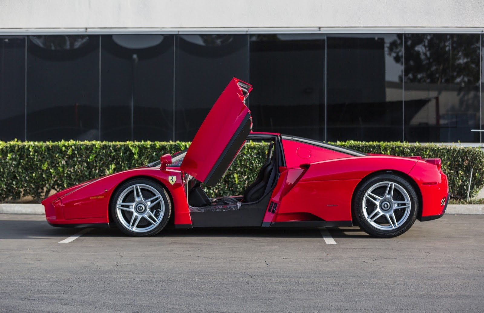 Ferrari Enzo-13