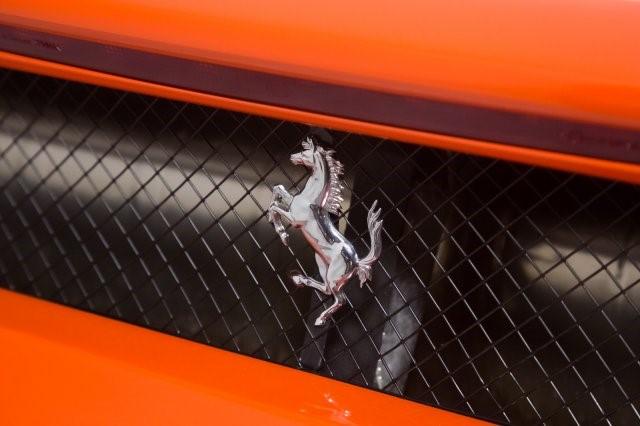 Ferrari Enzo Rosso Dino Orange (22)