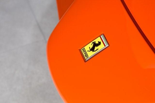 Ferrari Enzo Rosso Dino Orange (9)