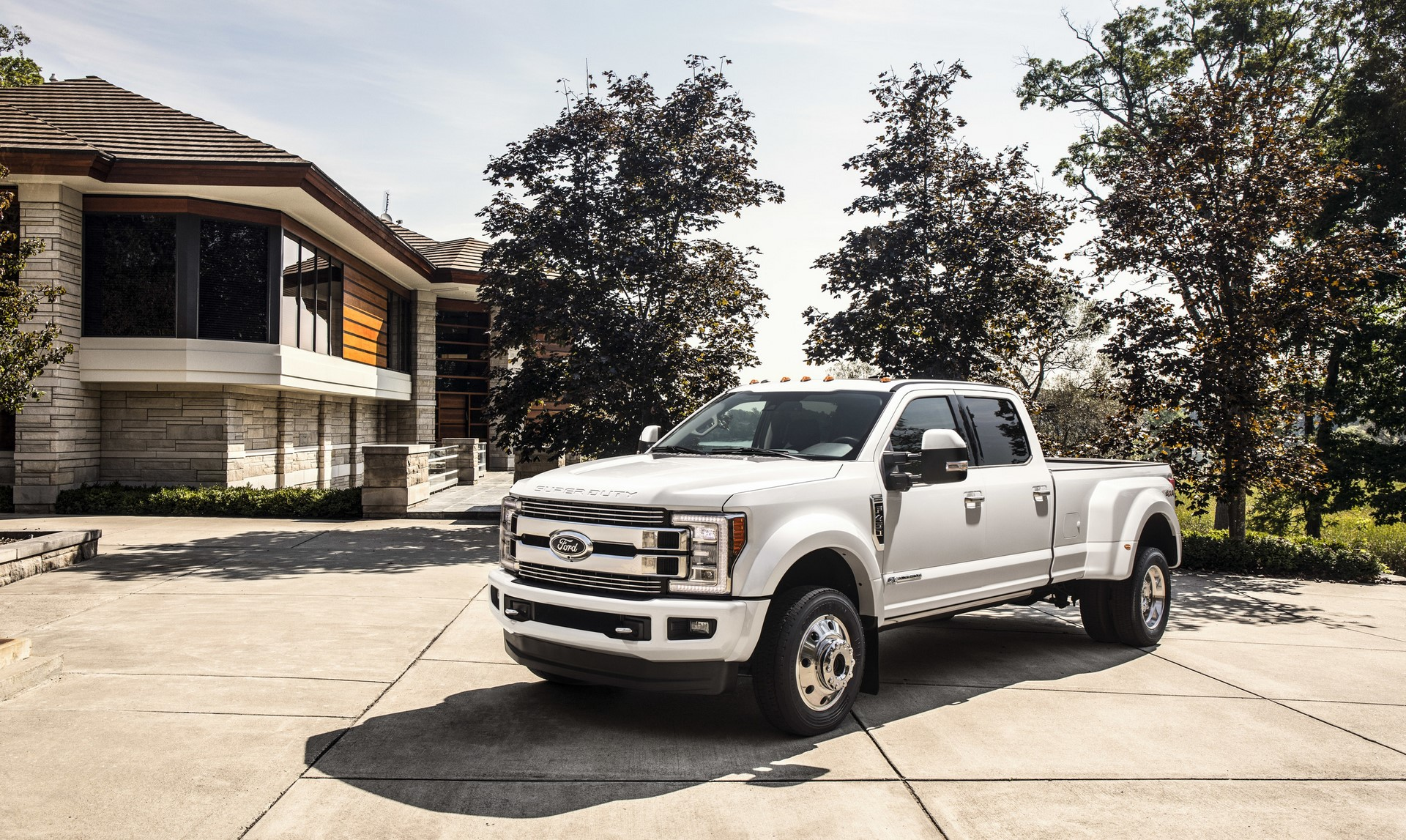 Ford F-Series Super Duty Limited 2018 (2)