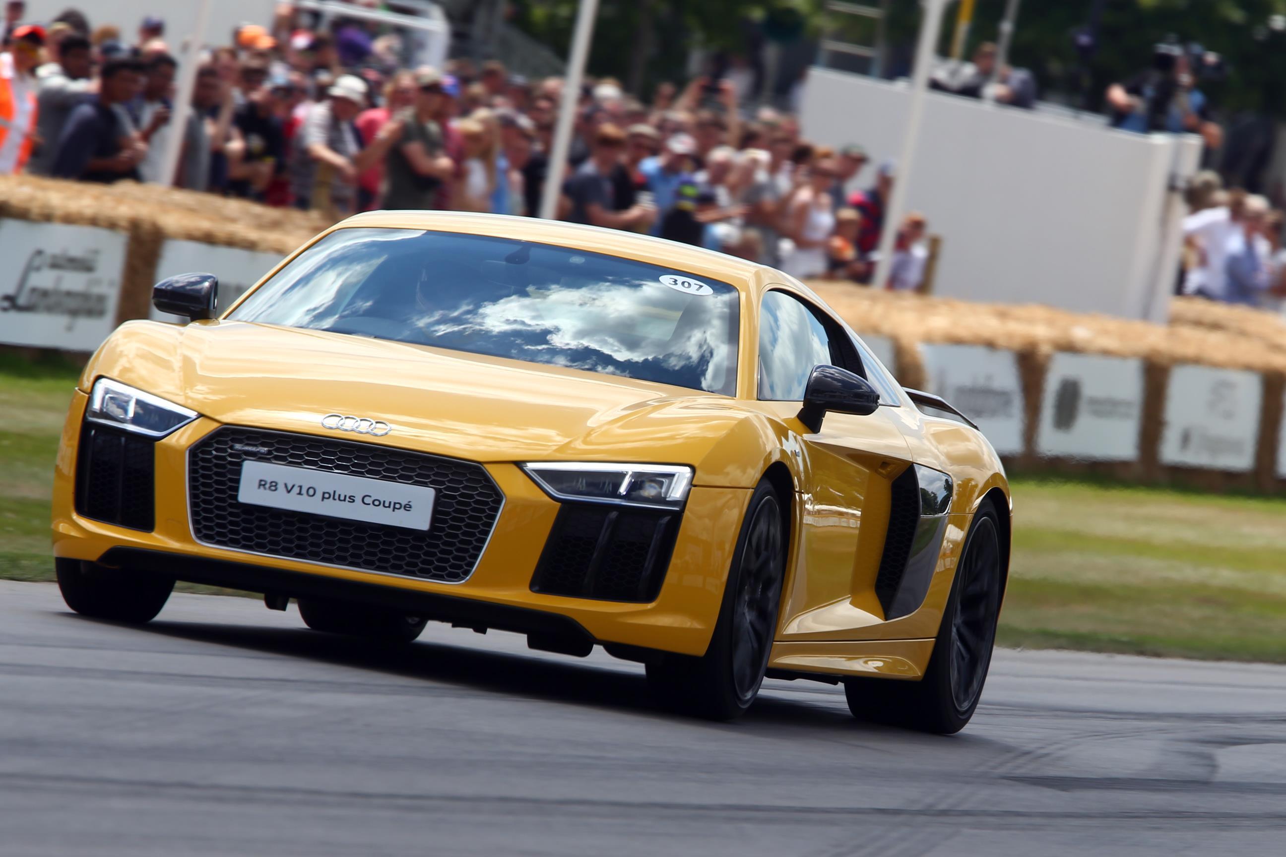 Audi(1)