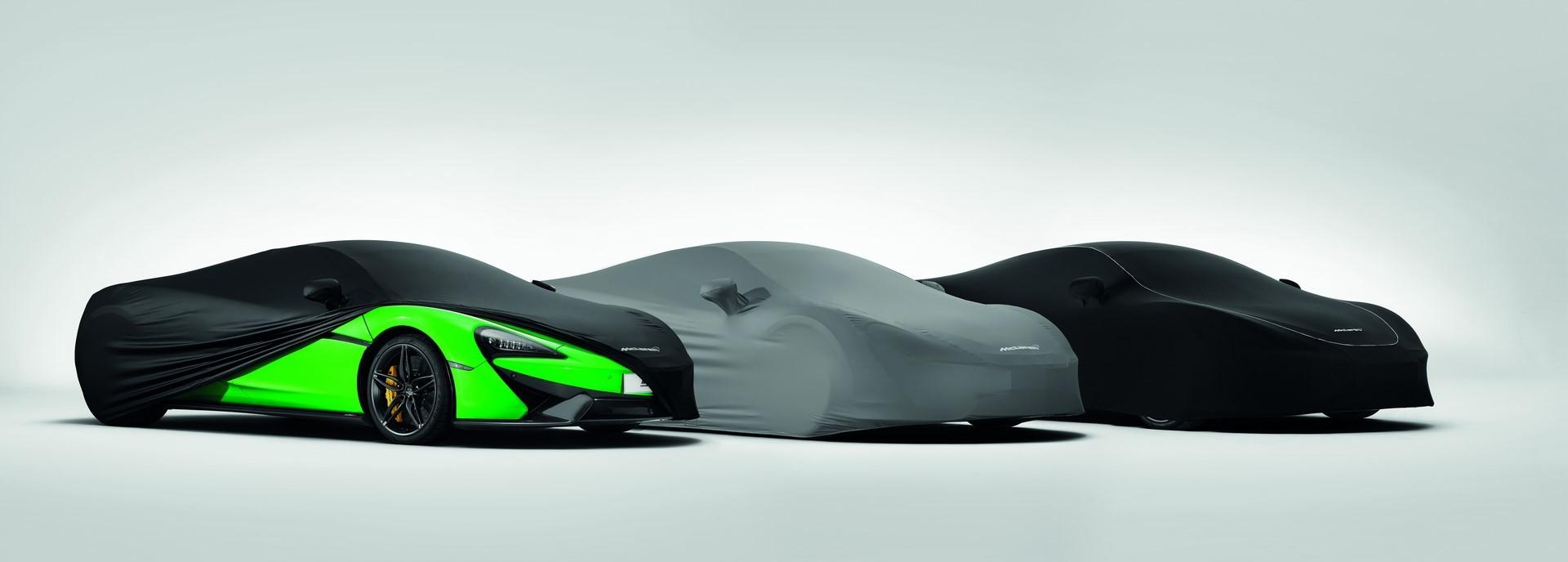 McLaren Sports Series Accessories (3)