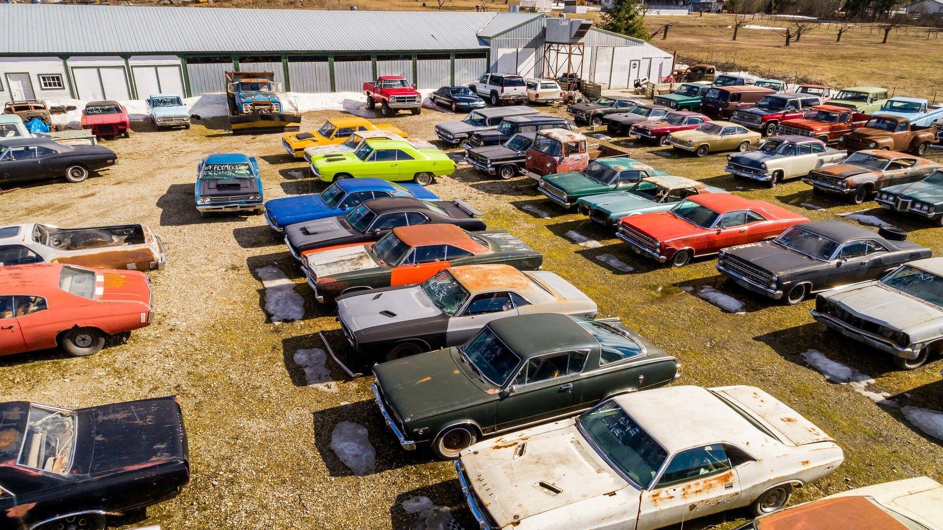 Mike Hall cars (11)