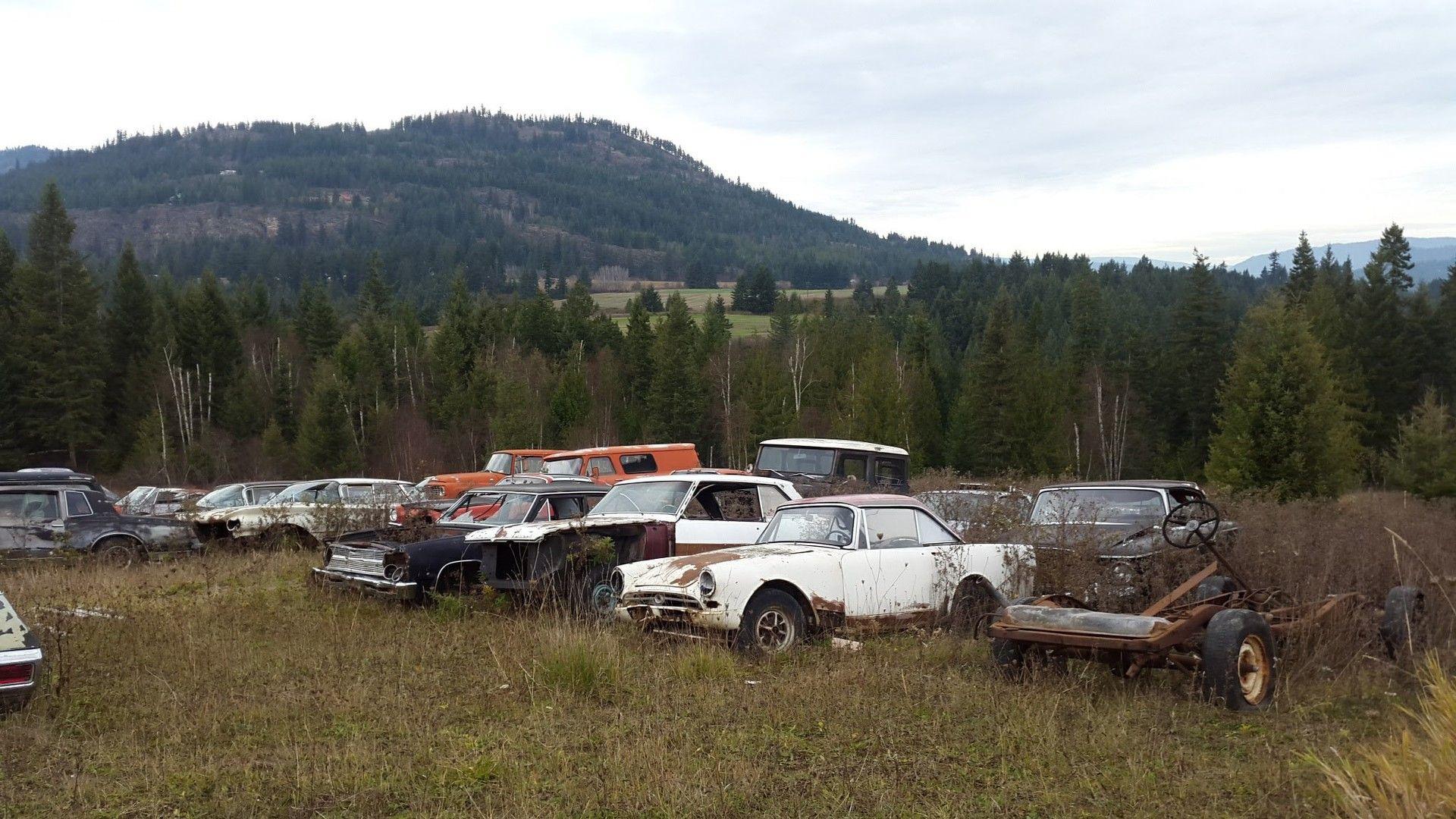 Mike Hall cars (14)