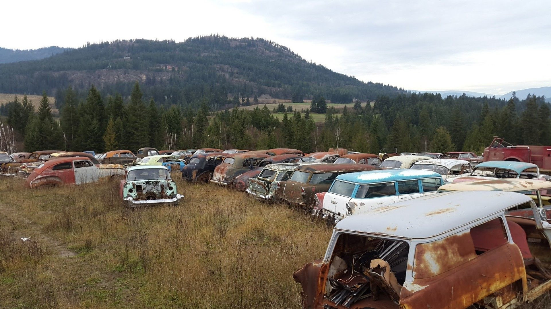 Mike Hall cars (31)