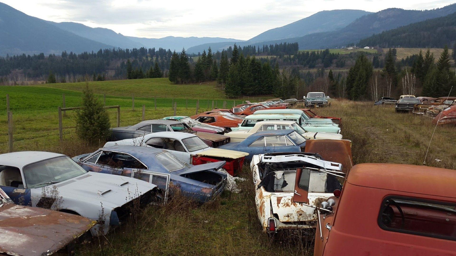 Mike Hall cars (5)