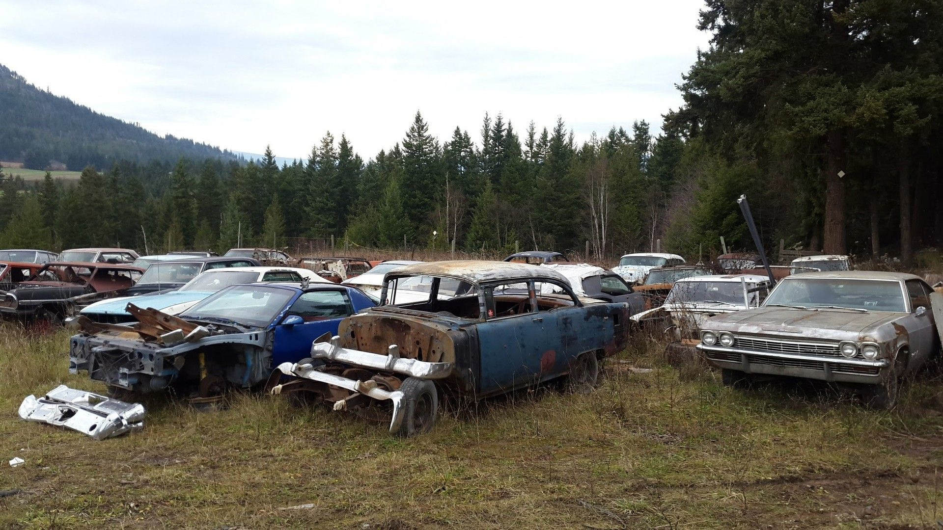 Mike Hall cars (9)