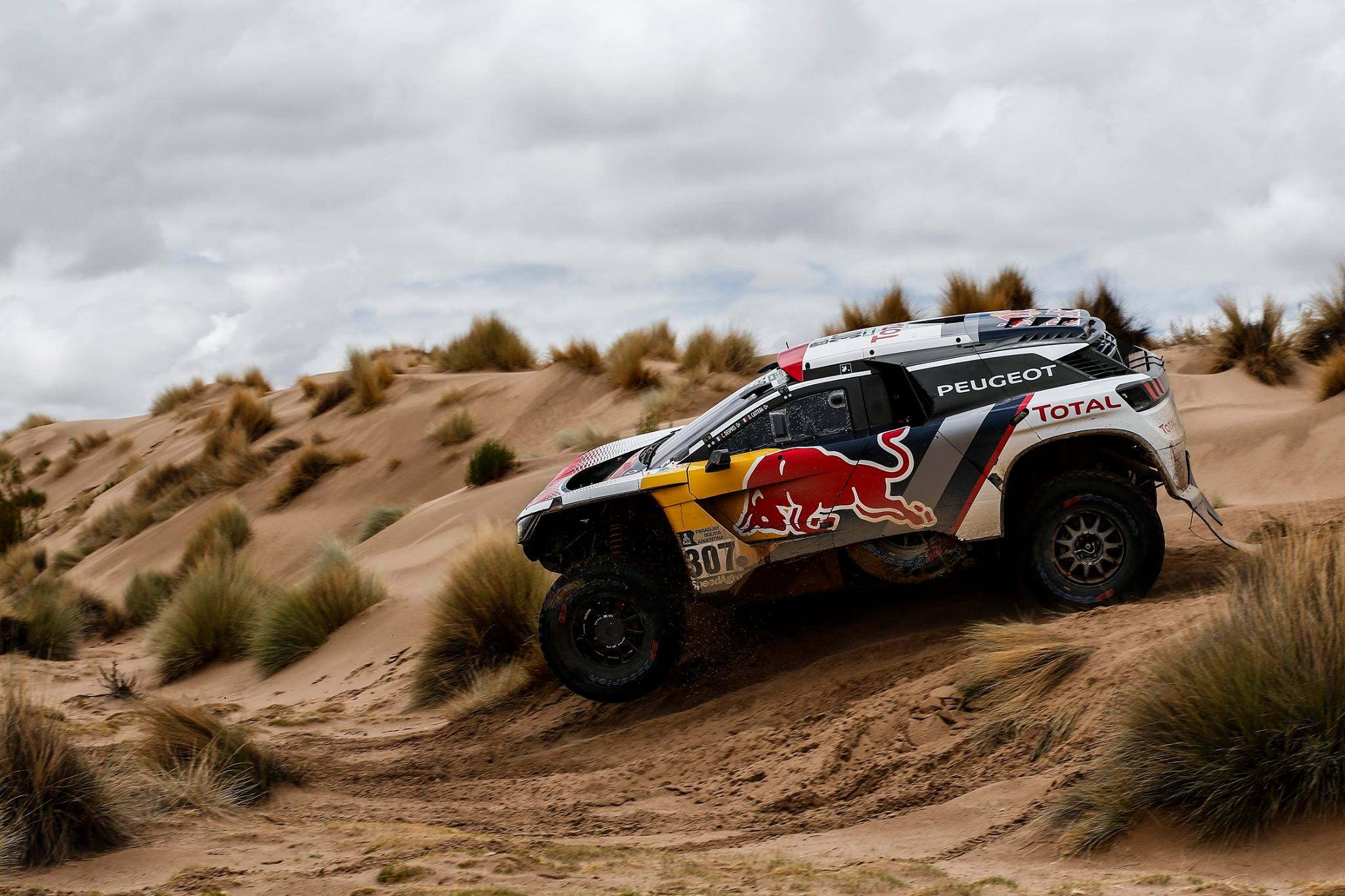 Rally Dakar 2017 Last Day (11)