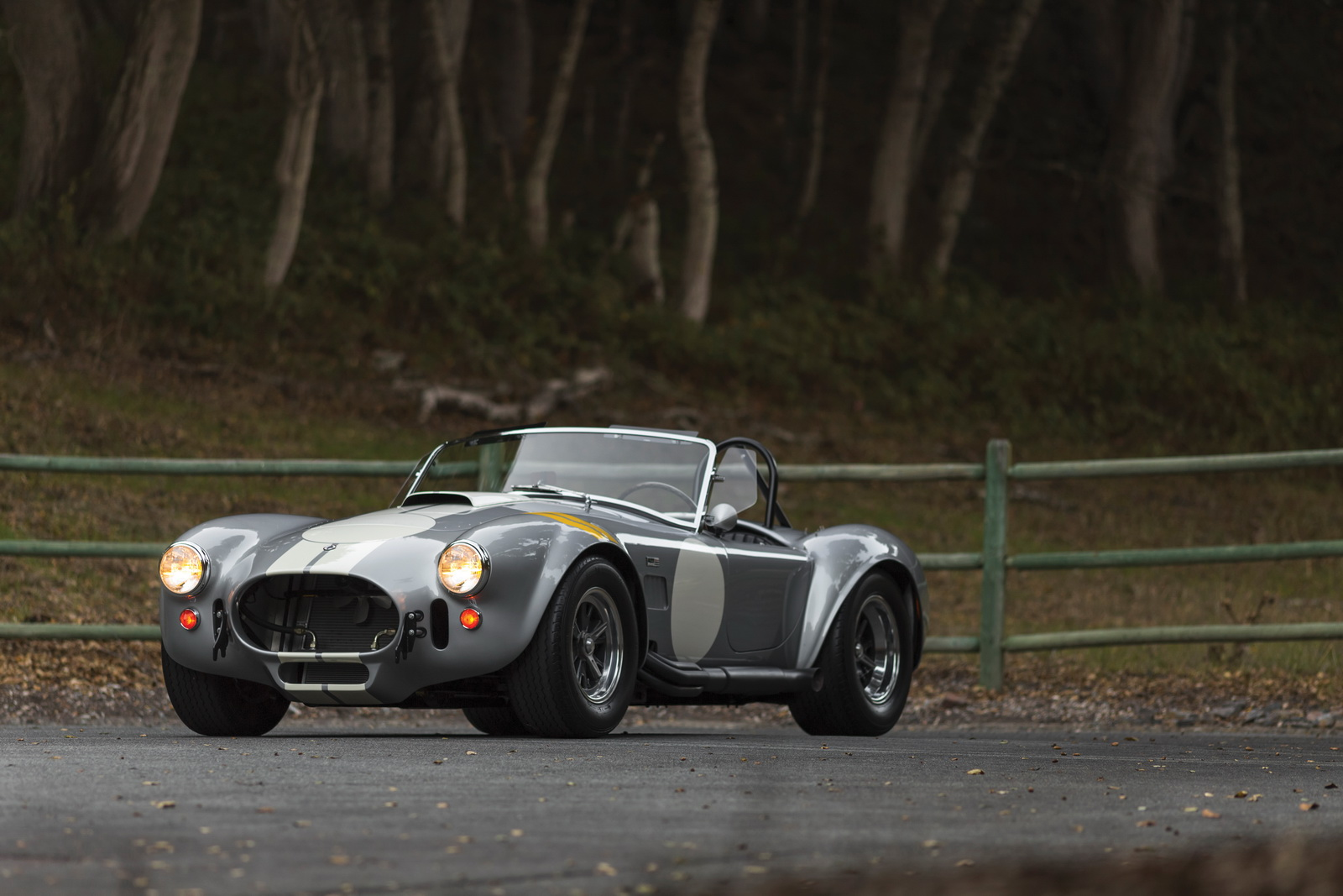 Shelby 427 Cobra Semi-Competition 1966 auction (11)