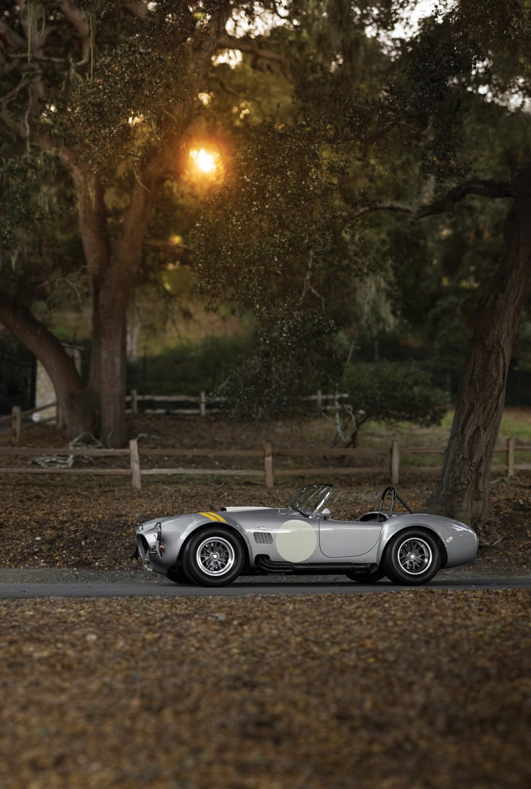 Shelby 427 Cobra Semi-Competition 1966 auction (14)