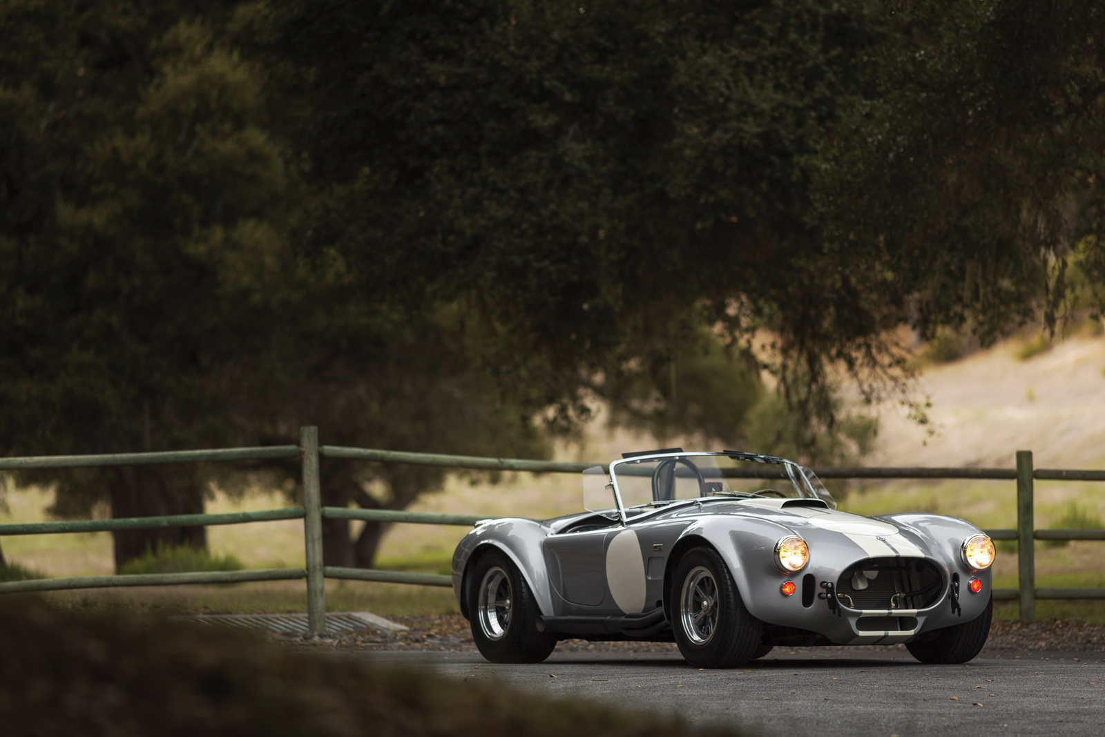 Shelby 427 Cobra Semi-Competition 1966 auction (16)