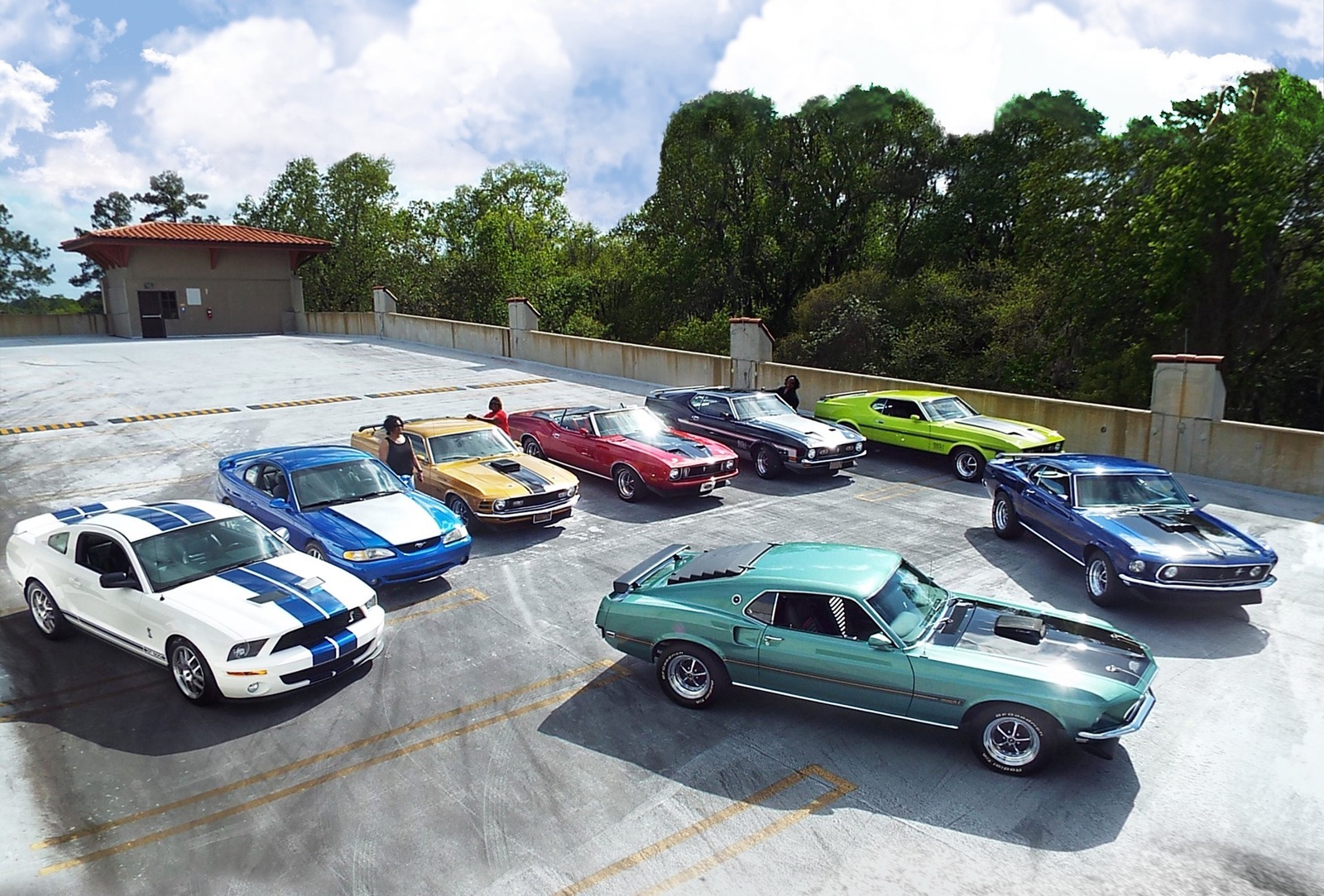 Speed_family_Mustangs_14