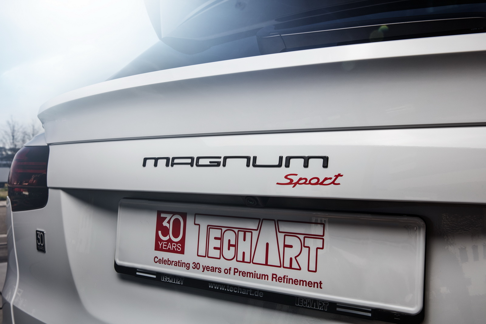 Techart Magnum Sport Edition 30 (17)