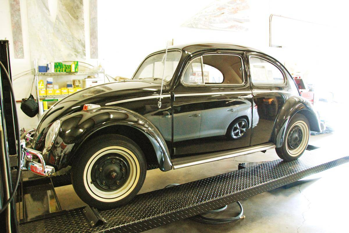 1964_Volkswagen_Beetle_for_Sale_0002