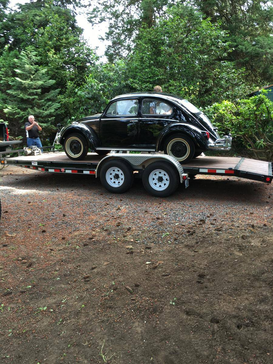 1964_Volkswagen_Beetle_for_Sale_0040