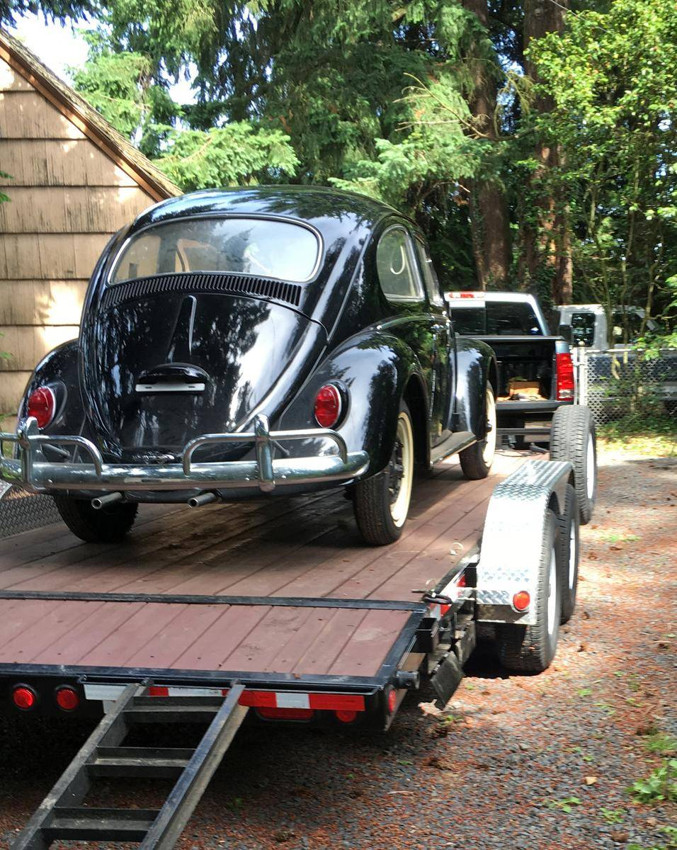 1964_Volkswagen_Beetle_for_Sale_0041