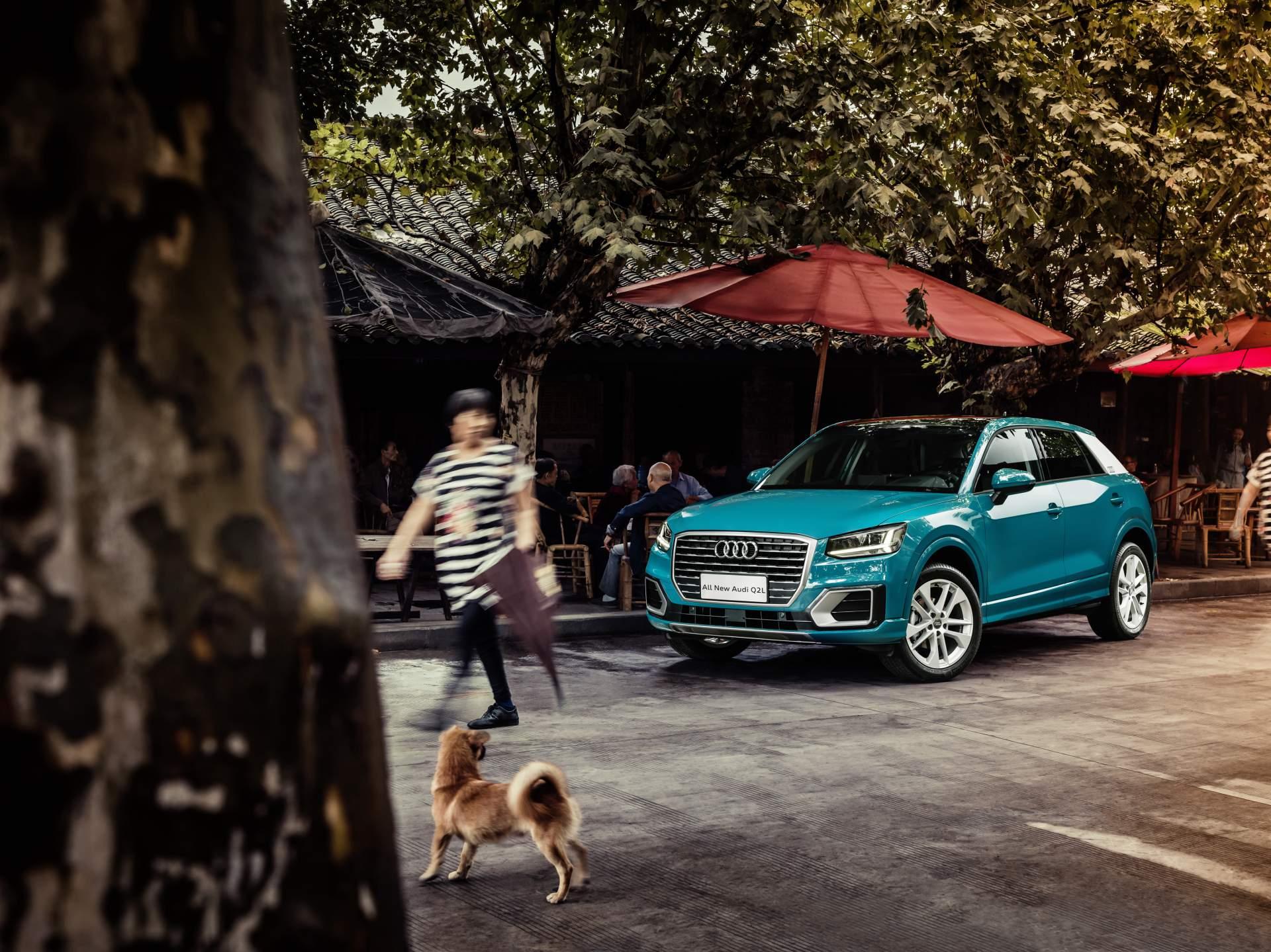 Audi_Q2_L_0021