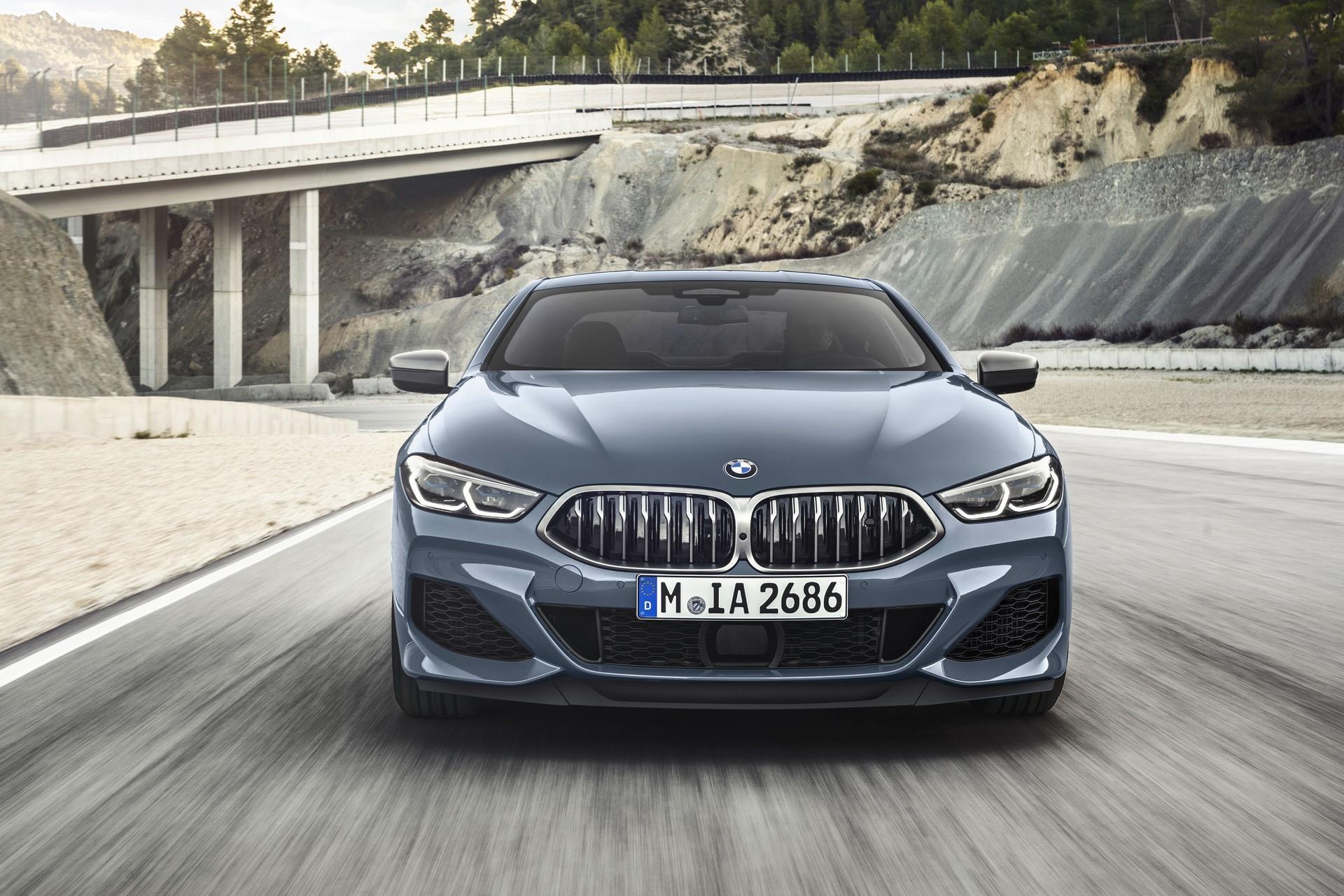 BMW 8-Series 2019 (19)
