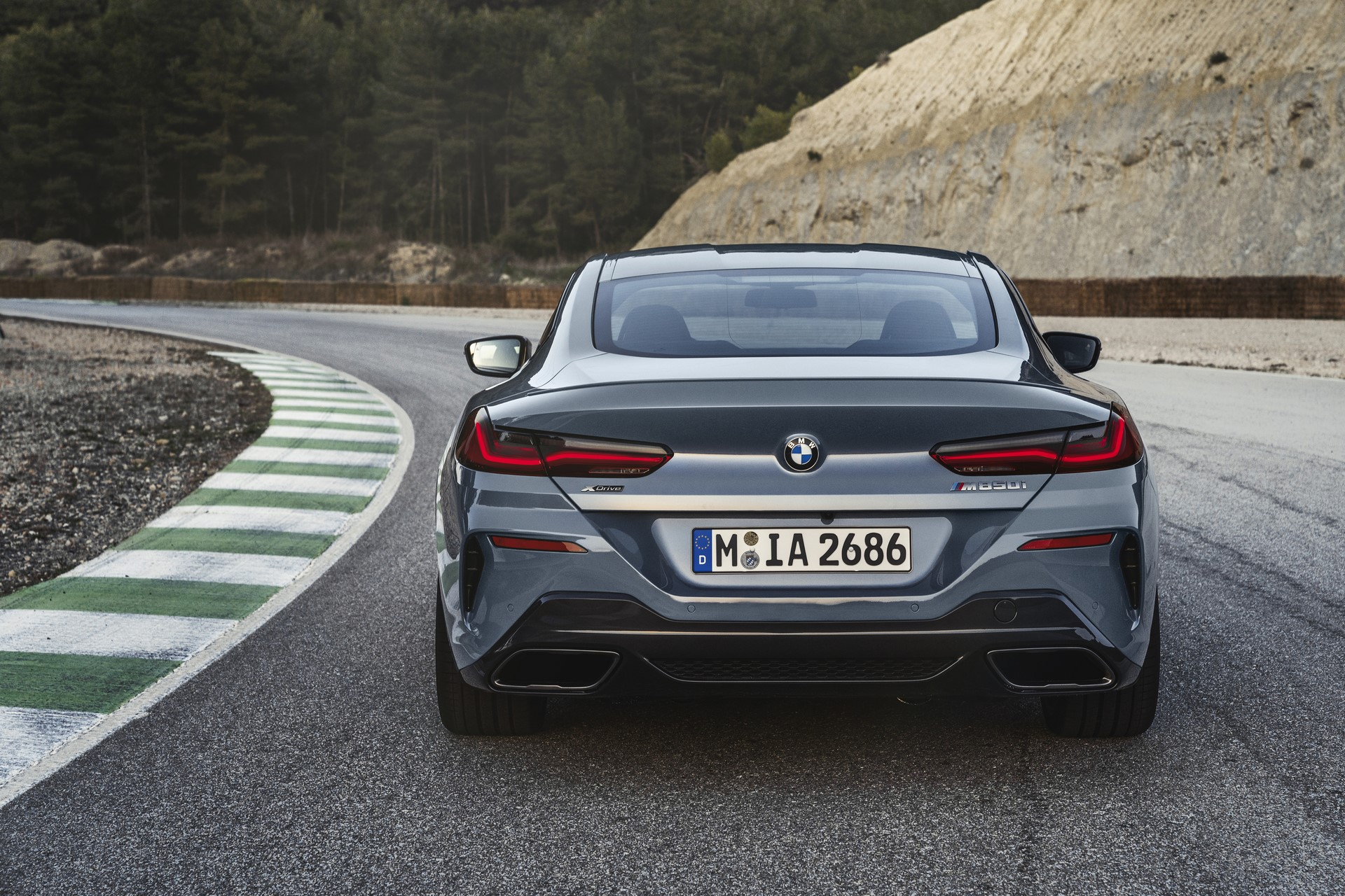 BMW 8-Series 2019 (38)