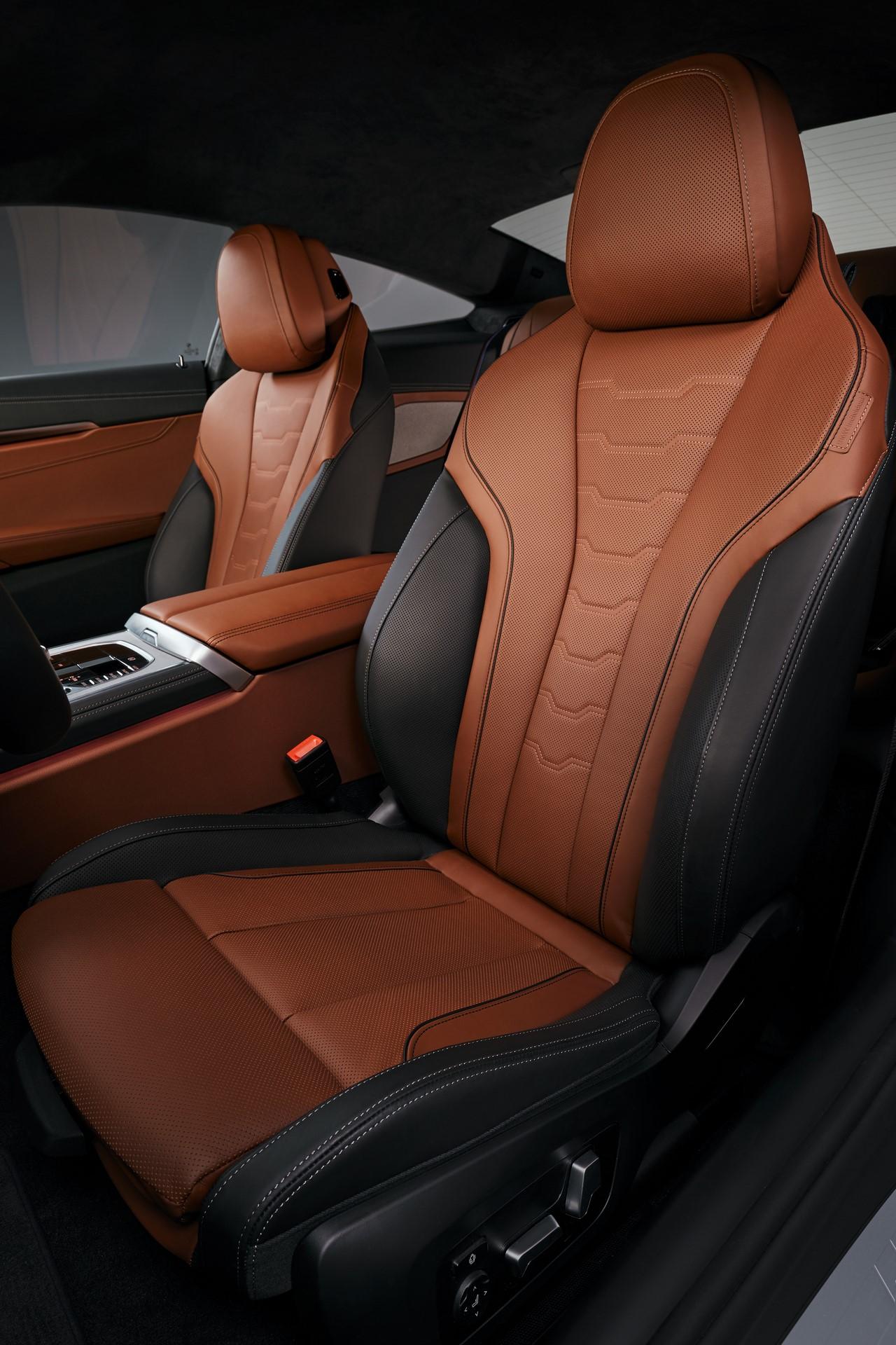 BMW 8-Series 2019 (70)