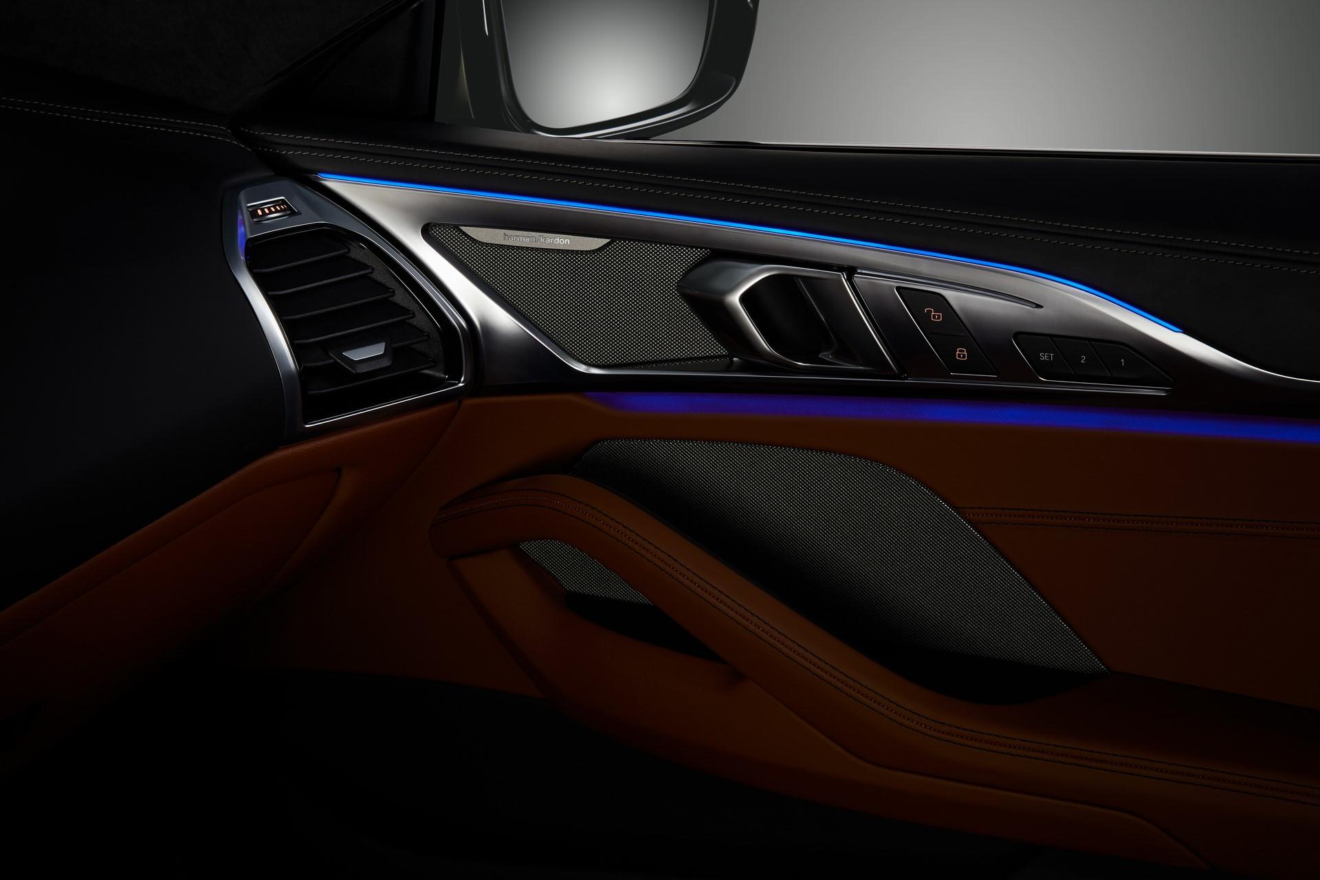 BMW 8-Series 2019 (76)