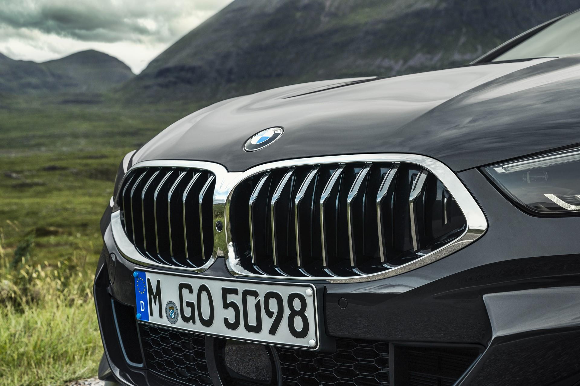 BMW 8 Series Convertible 2019 (14)