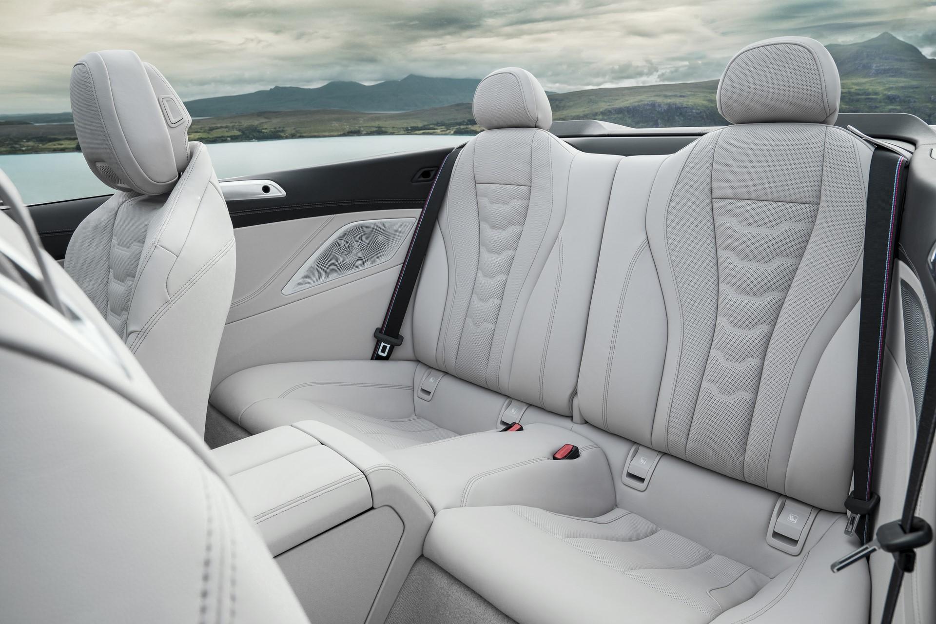 BMW 8 Series Convertible 2019 (22)