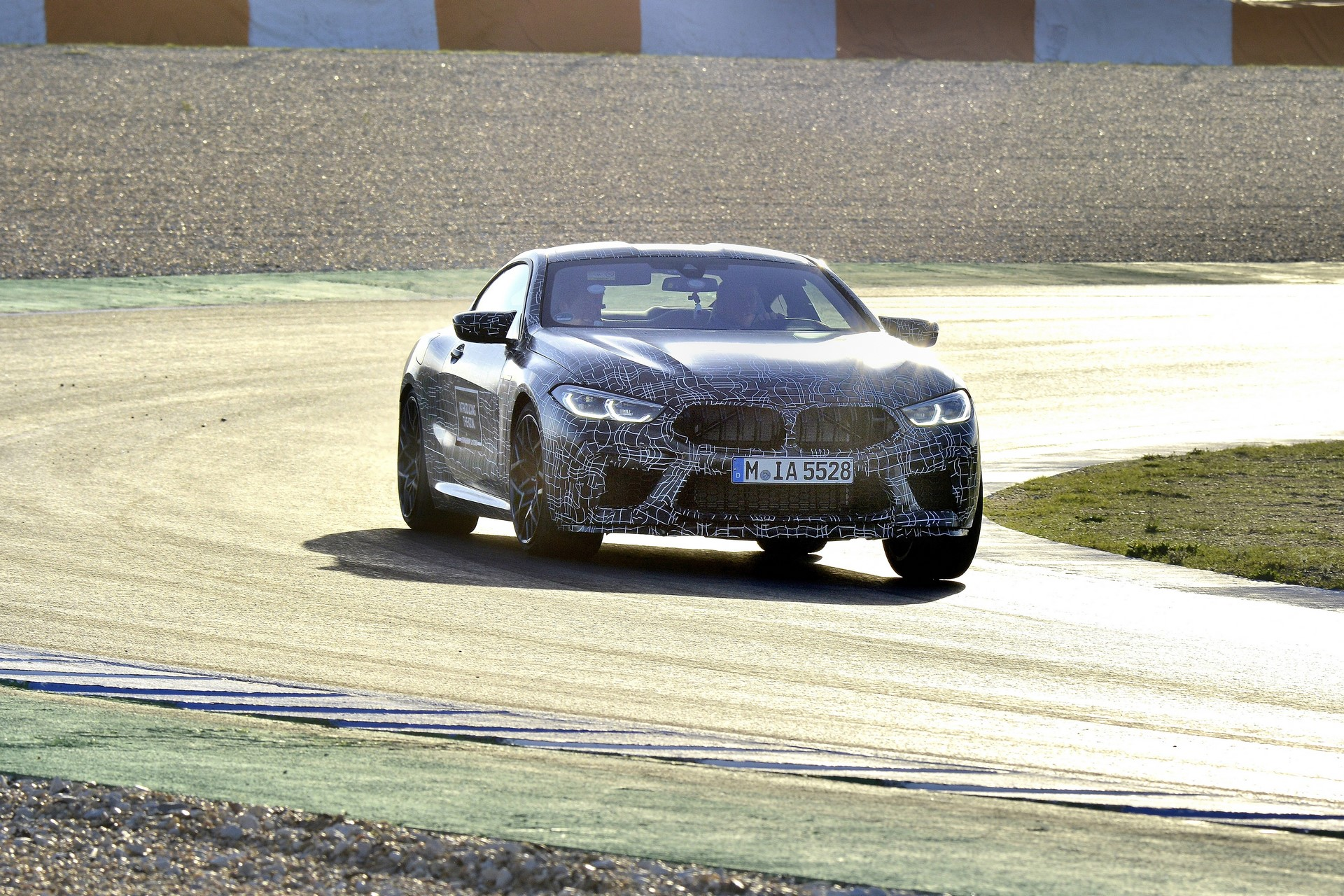 BMW M8 2019 Official Spy Photos (38)