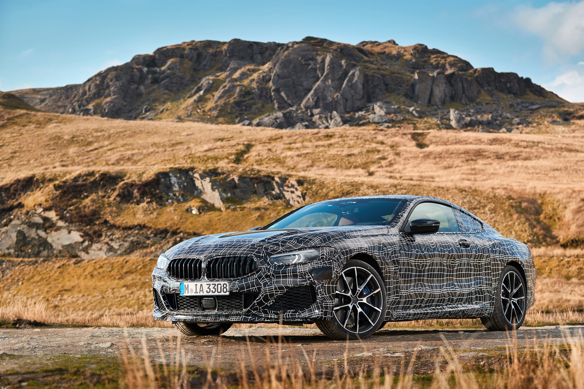 BMW M850i xDrive spy (11)