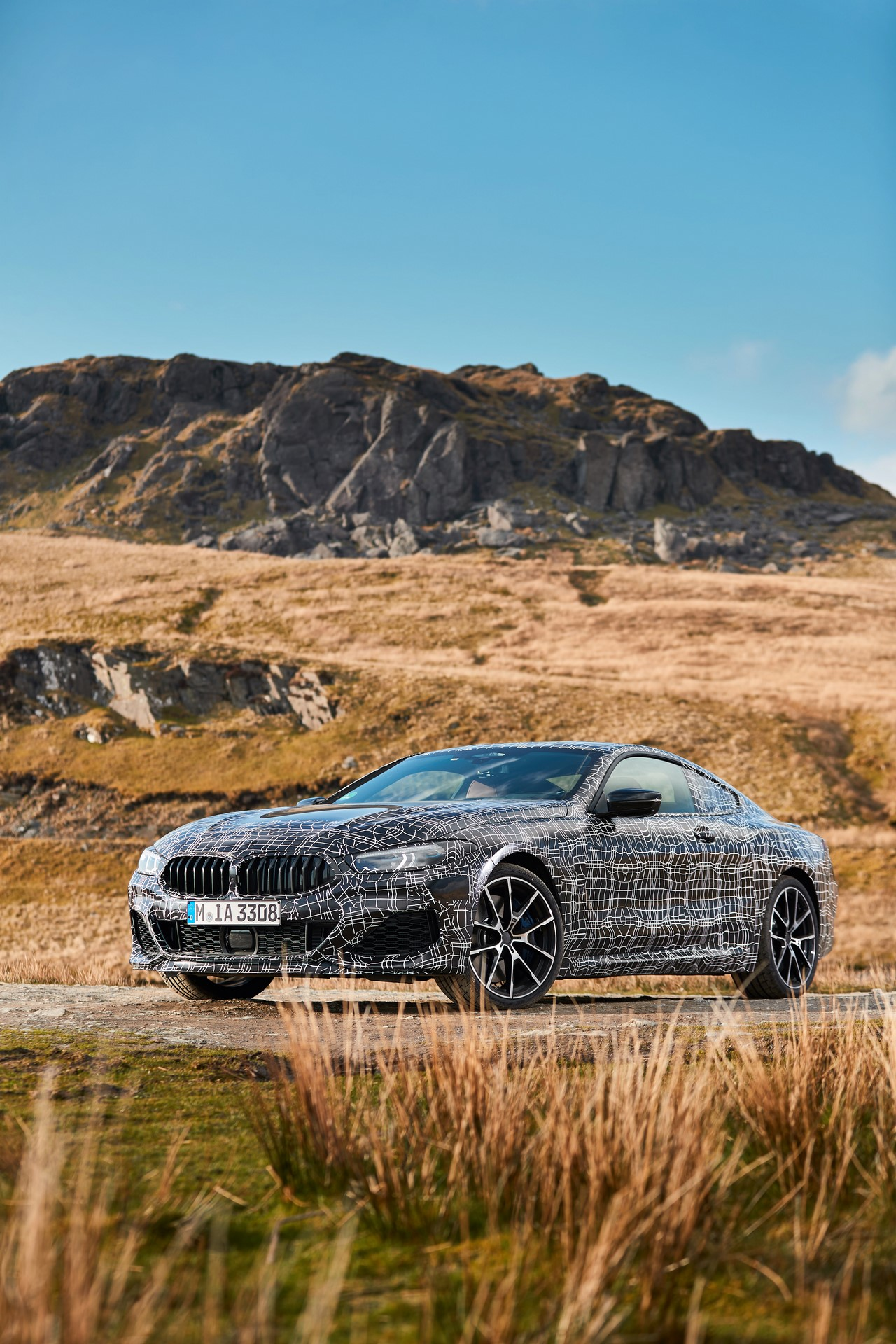 BMW M850i xDrive spy (12)