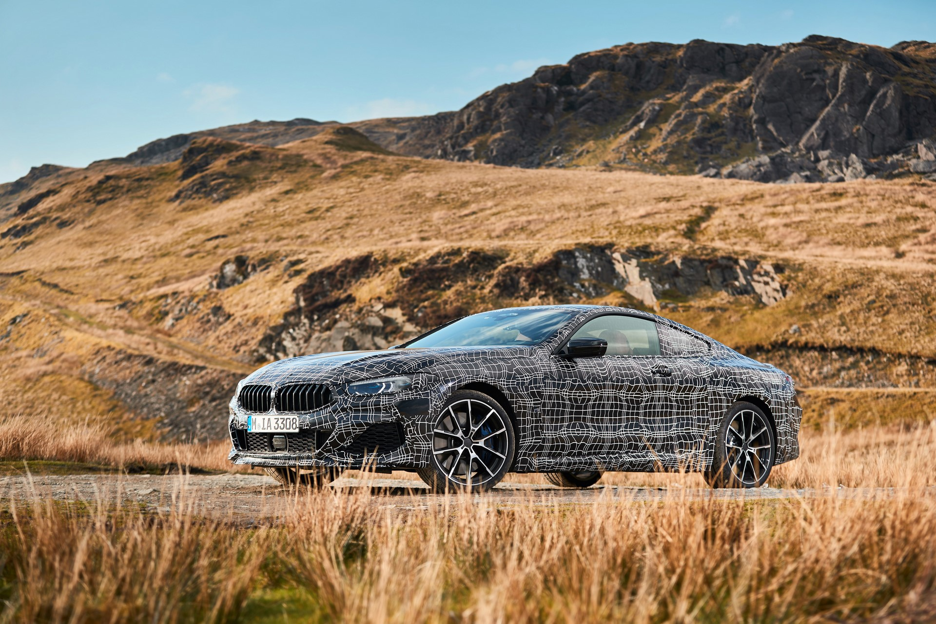 BMW M850i xDrive spy (13)