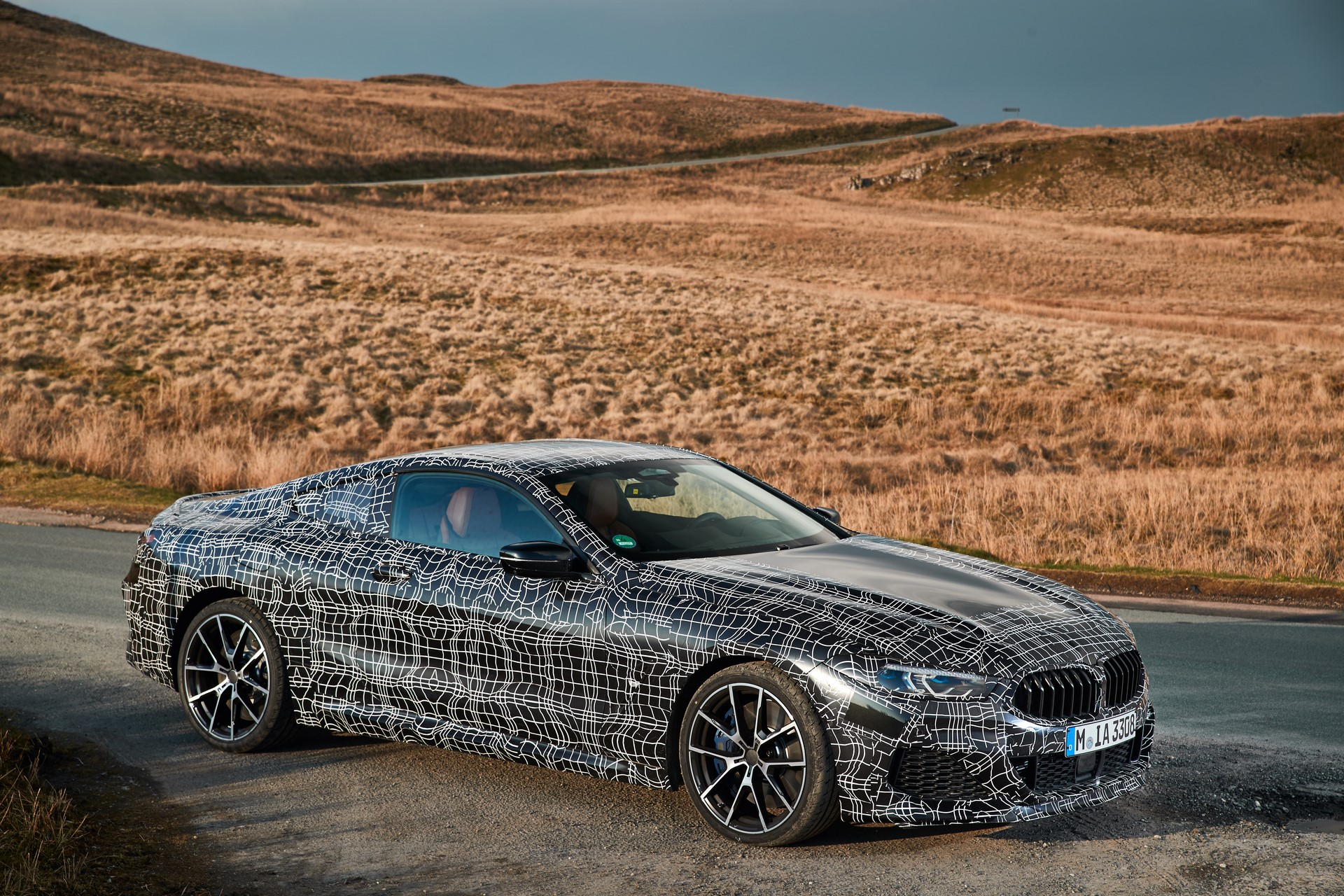 BMW M850i xDrive spy (15)
