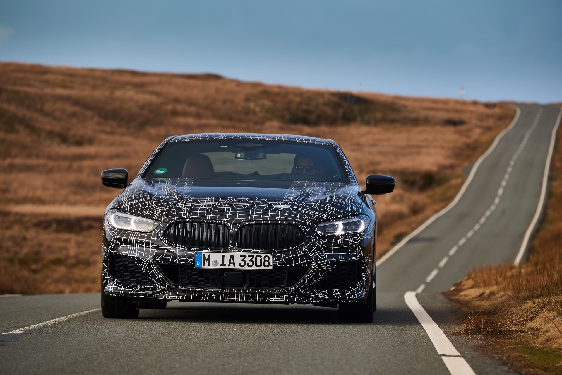 BMW M850i xDrive spy (25)