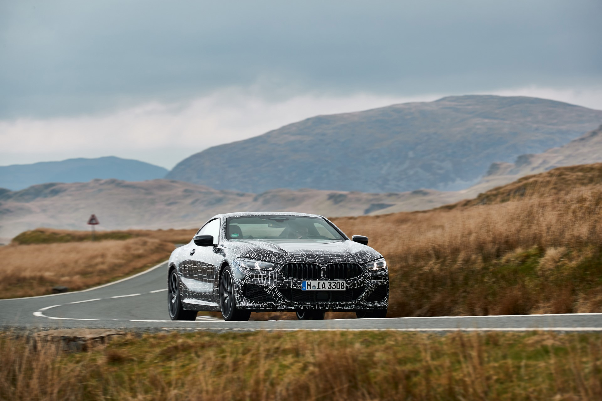 BMW M850i xDrive spy (33)