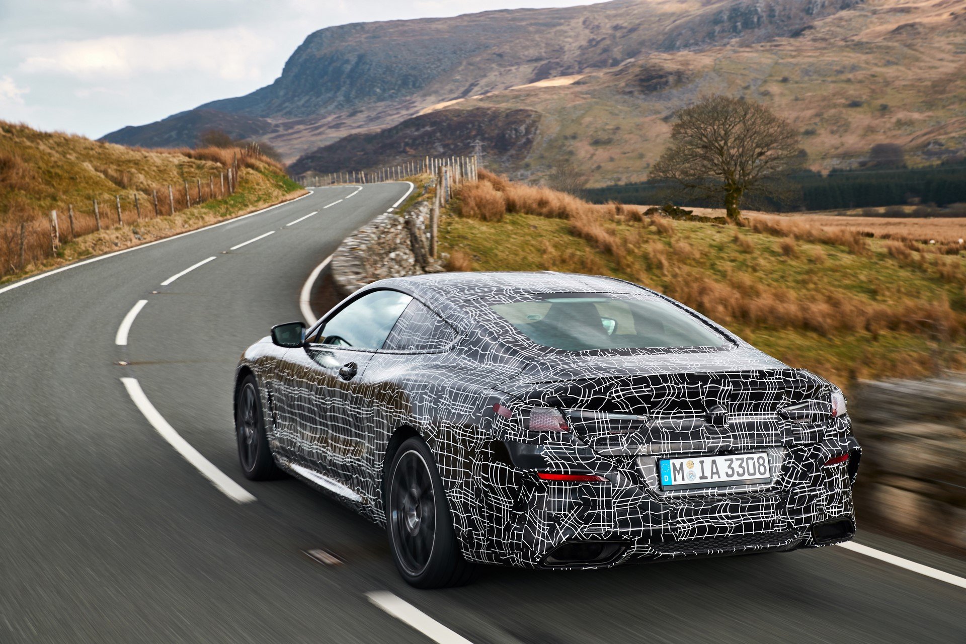 BMW M850i xDrive spy (8)