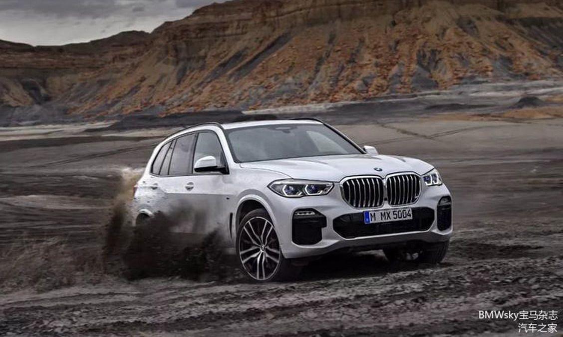 BMW X5 2019 (45)