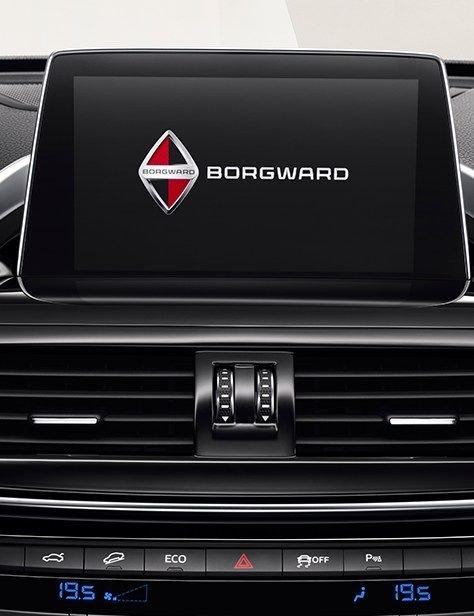 Borgward-BX6-8