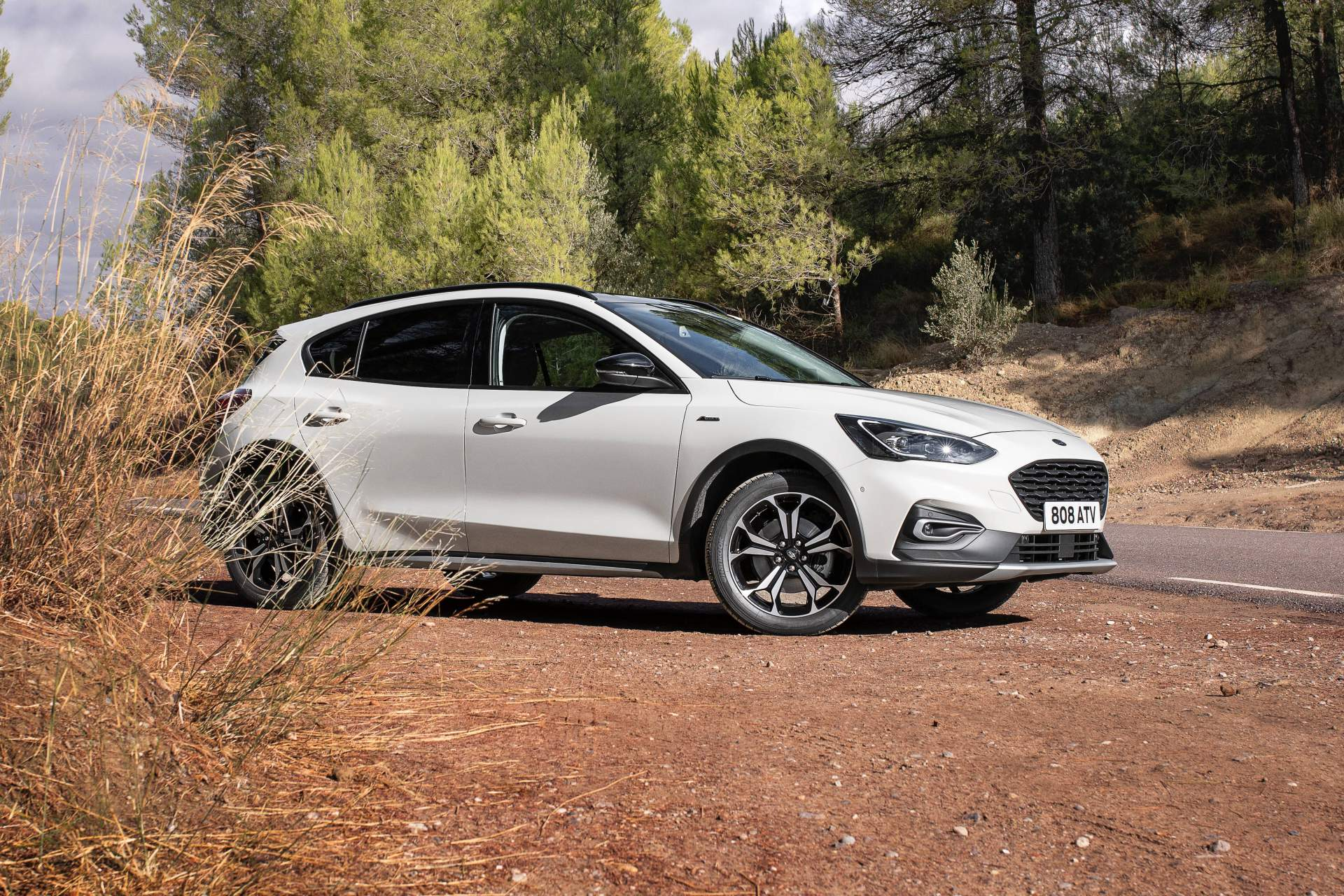 Ford Focus Active Wagon 2019 (3)