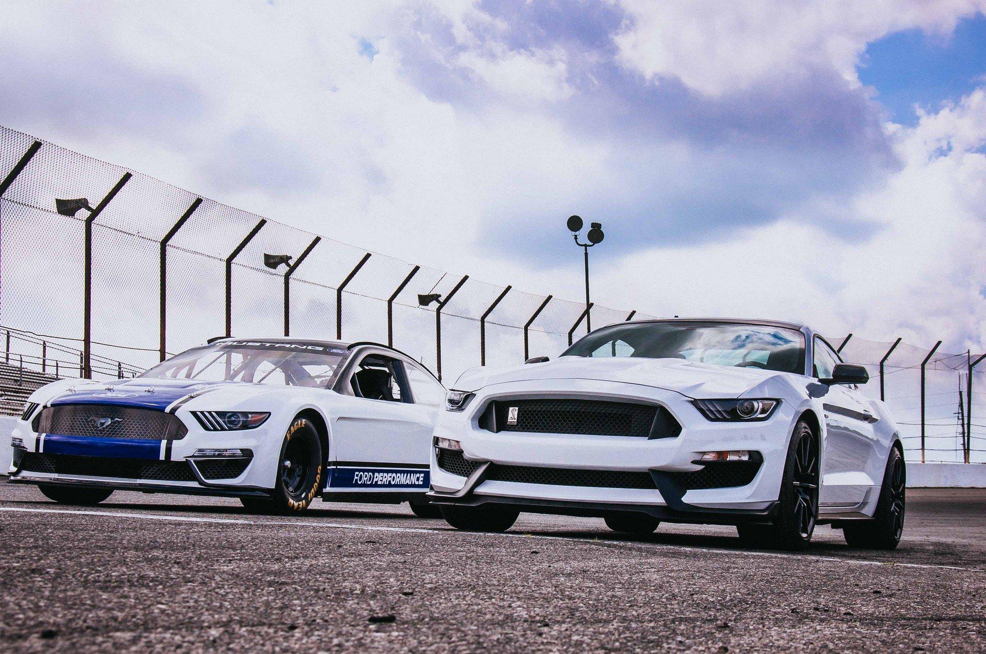 Ford Mustang Monster Energy NASCAR 2019 3